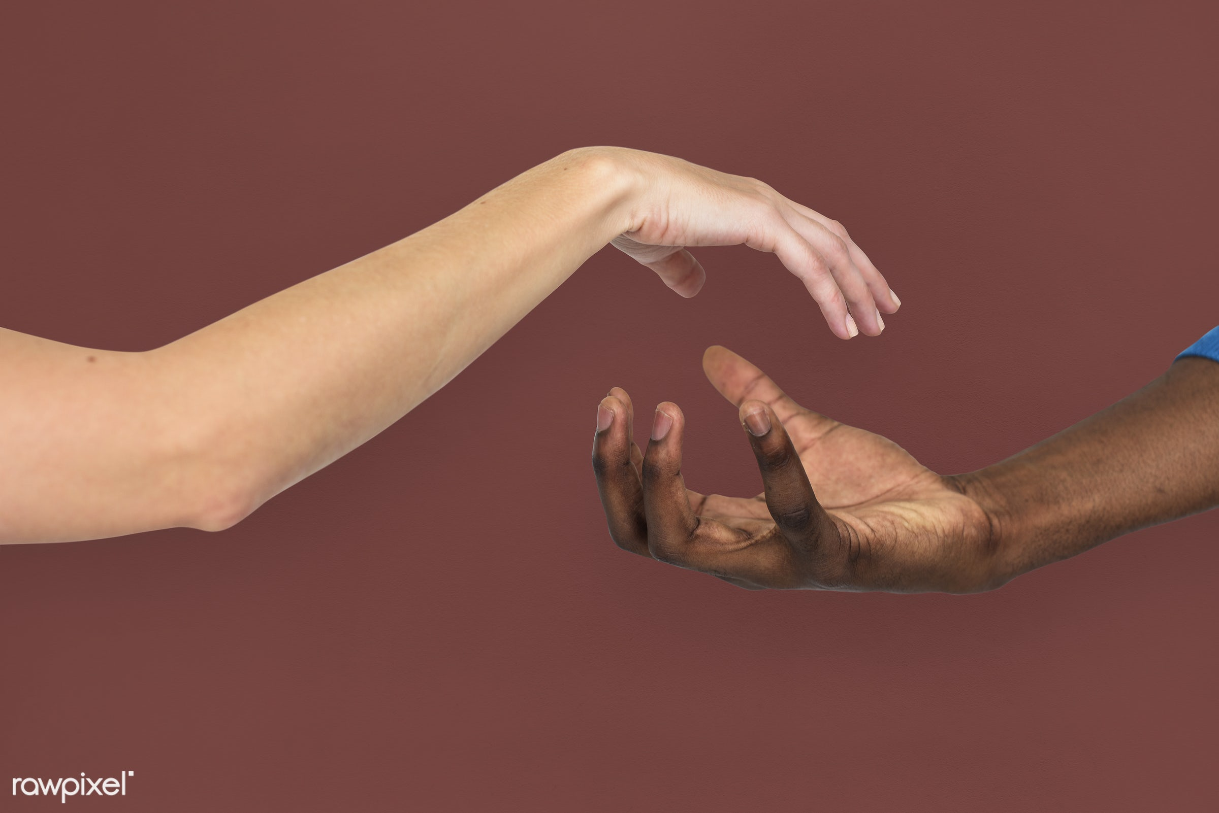 person, race, caucasian, hand, woman, integration, friendship, showing, partner, man, isolated, diversity, african descent,...