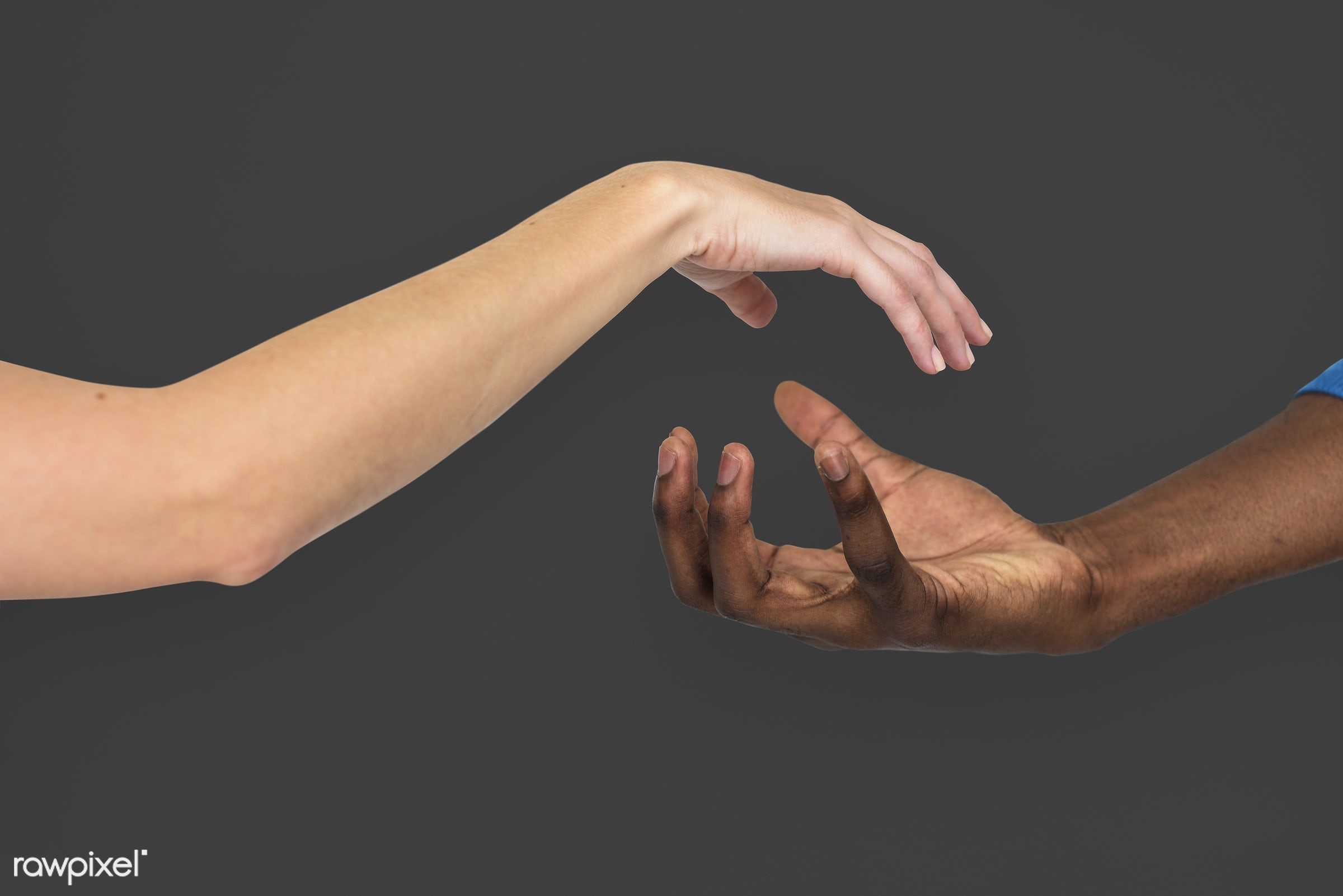 person, race, caucasian, hand, woman, integration, friendship, showing, partner, man, black, isolated, diversity, african...