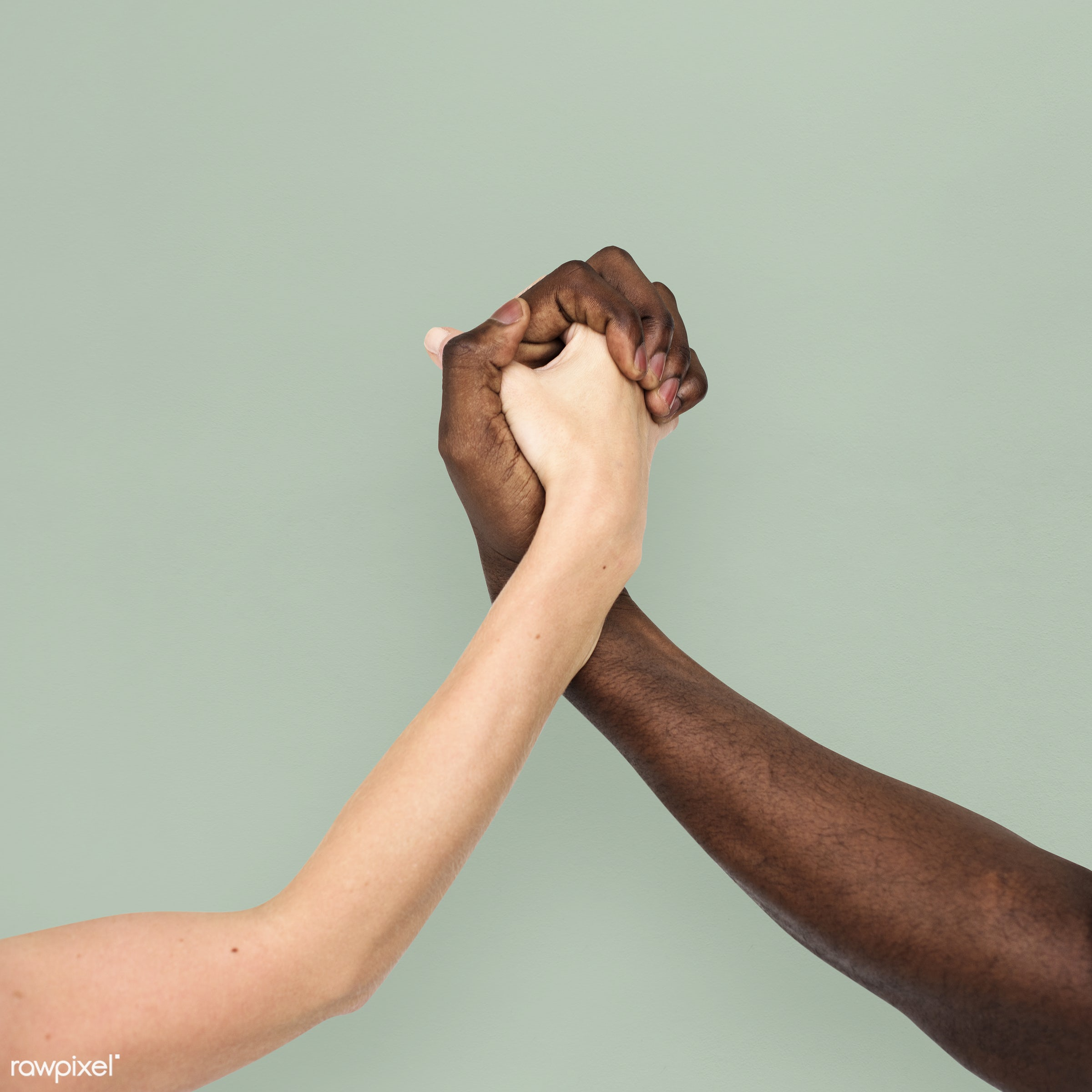 person, holding hand, race, caucasian, hand, woman, integration, friendship, showing, partner, couple, man, isolated,...