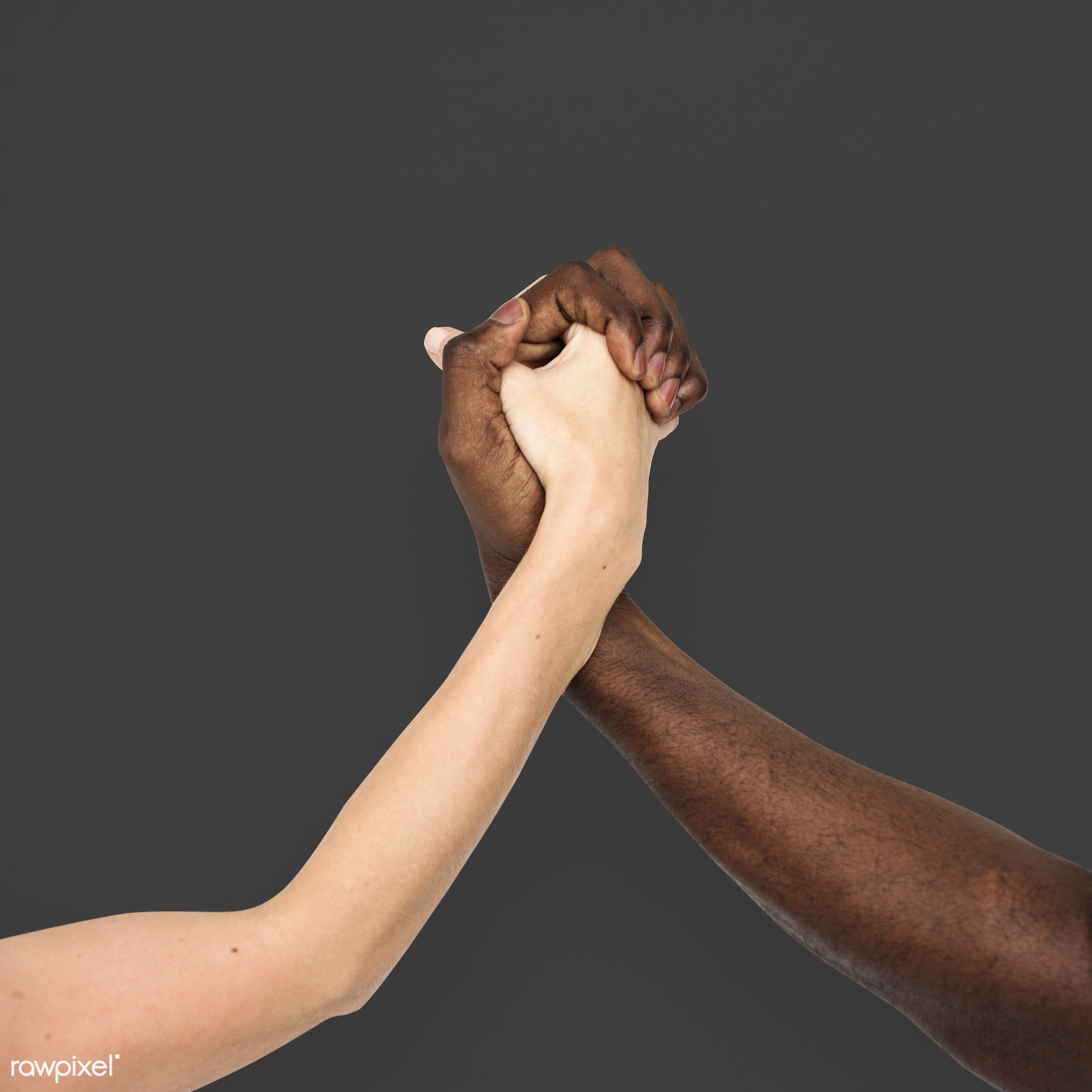 person, holding hand, race, caucasian, hand, woman, integration, friendship, showing, partner, couple, man, black, isolated...