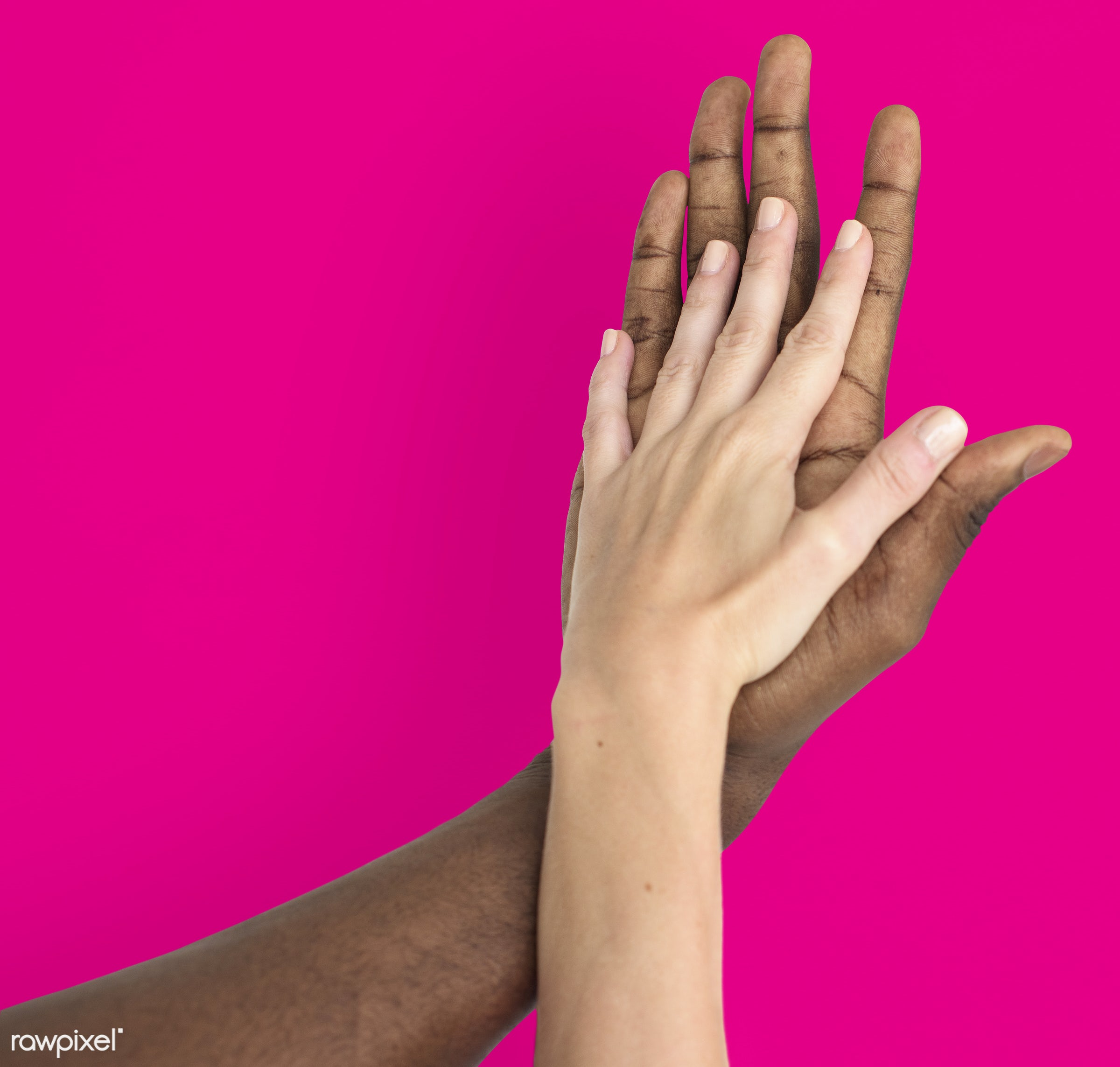 person, holding hand, race, caucasian, hand, woman, integration, friendship, showing, pink, partner, couple, man, isolated,...