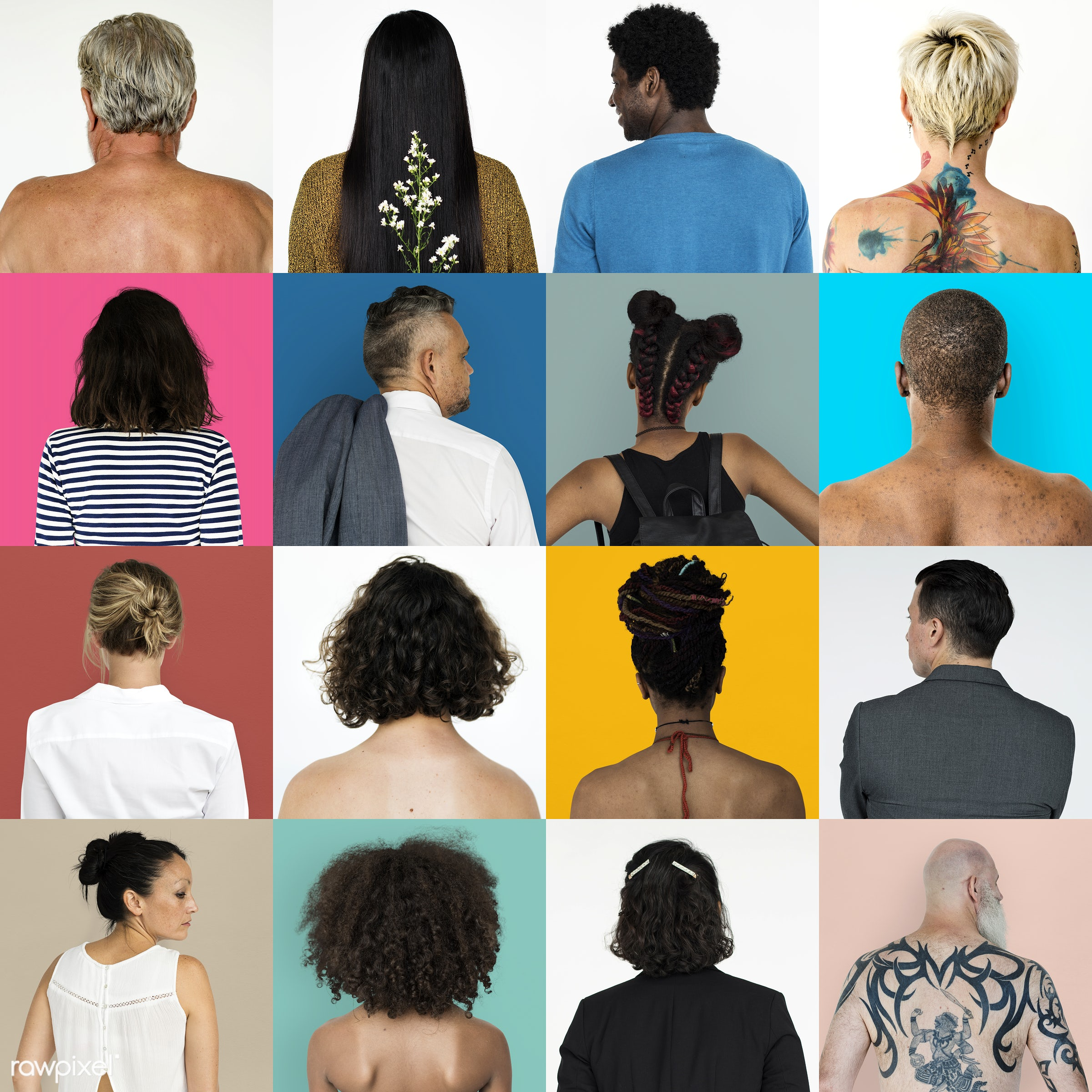 Set of portraits of backs - studio, person, set, collection, people, life, young adult, bared chest, woman, lifestyle, mixed...