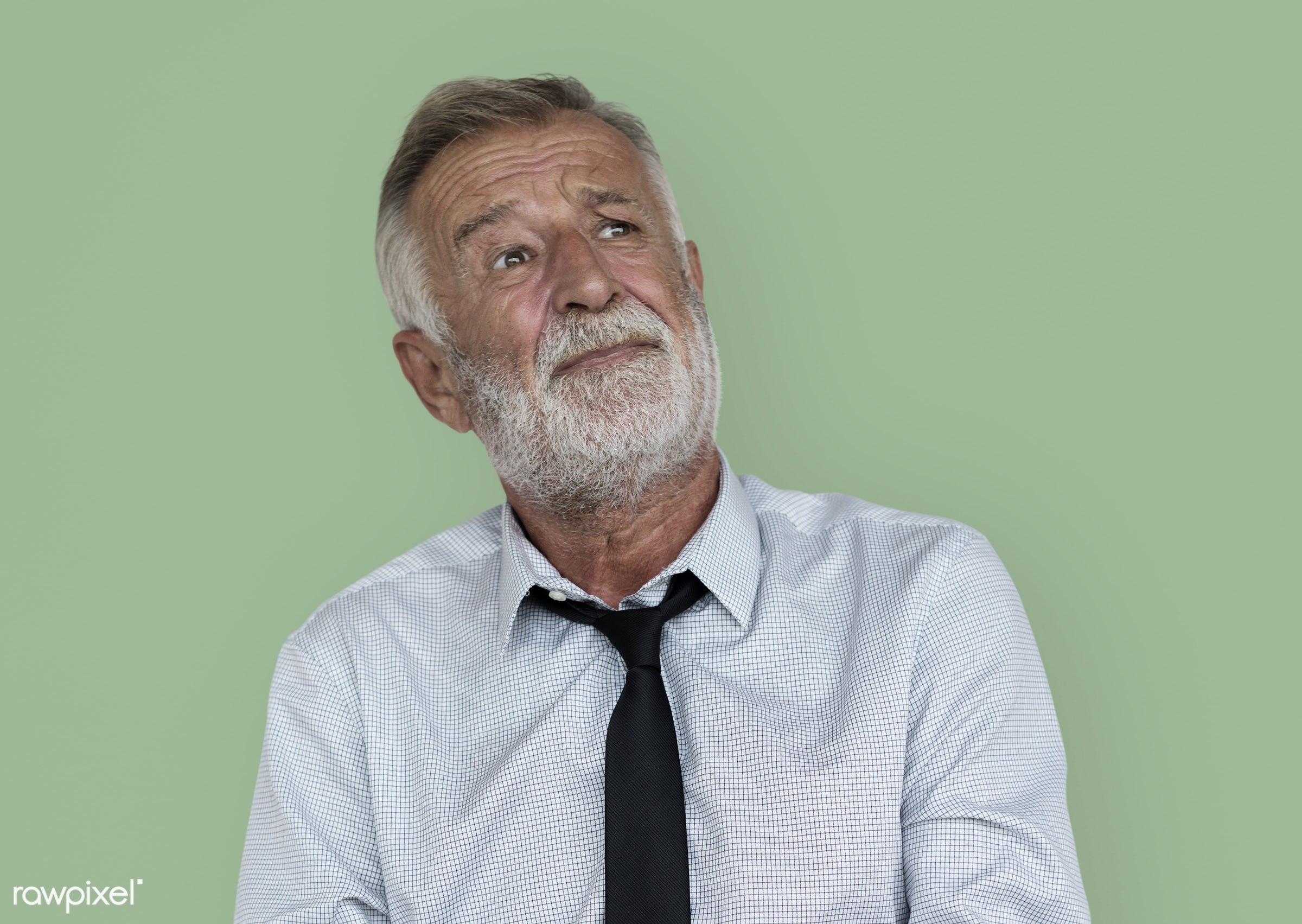 expression, intelligent, studio, pastel, person, people, caucasian, serious, isolated, earth tones, portrait, grey hair,...