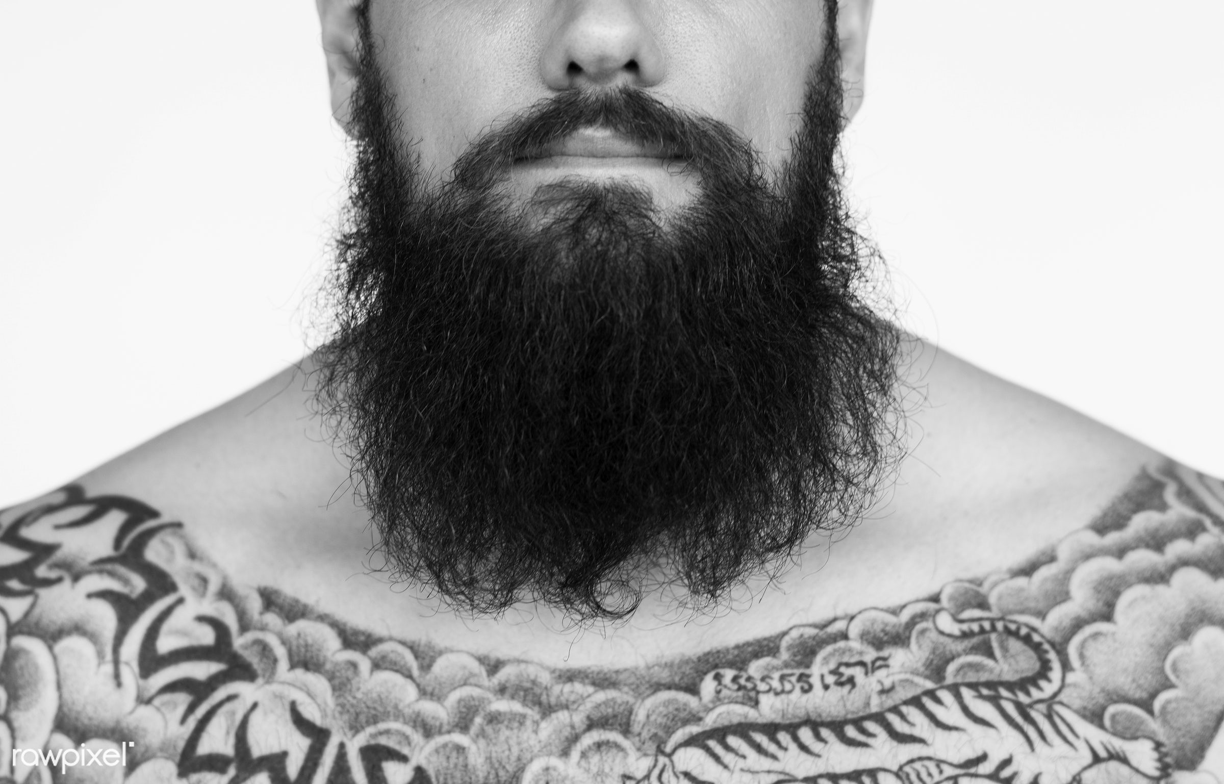 Portrait of a big tattooed bearded man - studio, body, concept, model, person, technician, people, skin, style, nature,...