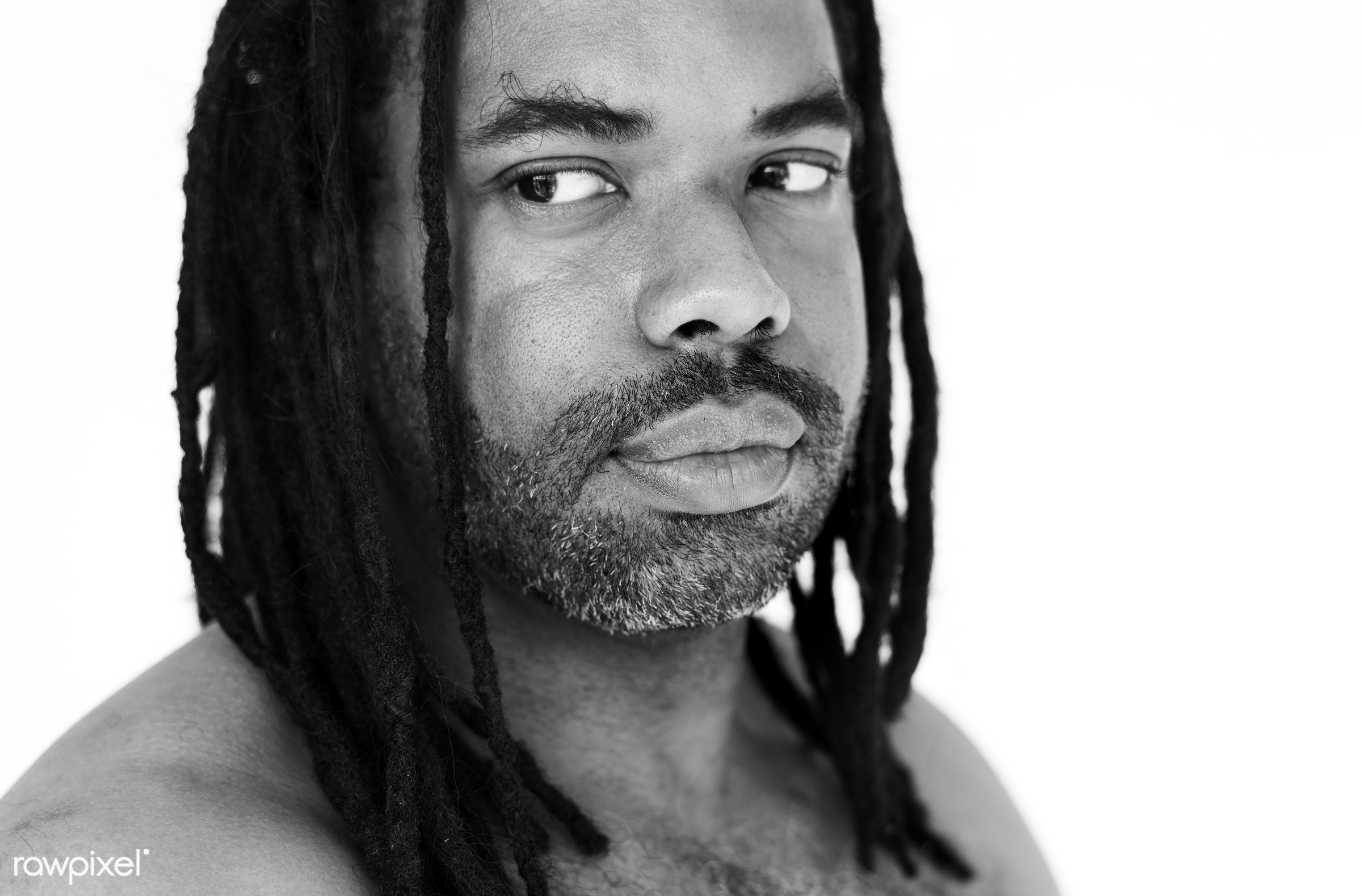 Portrait of an African American man with braids - studio, model, concept, person, people, style, nature, stylish, men,...
