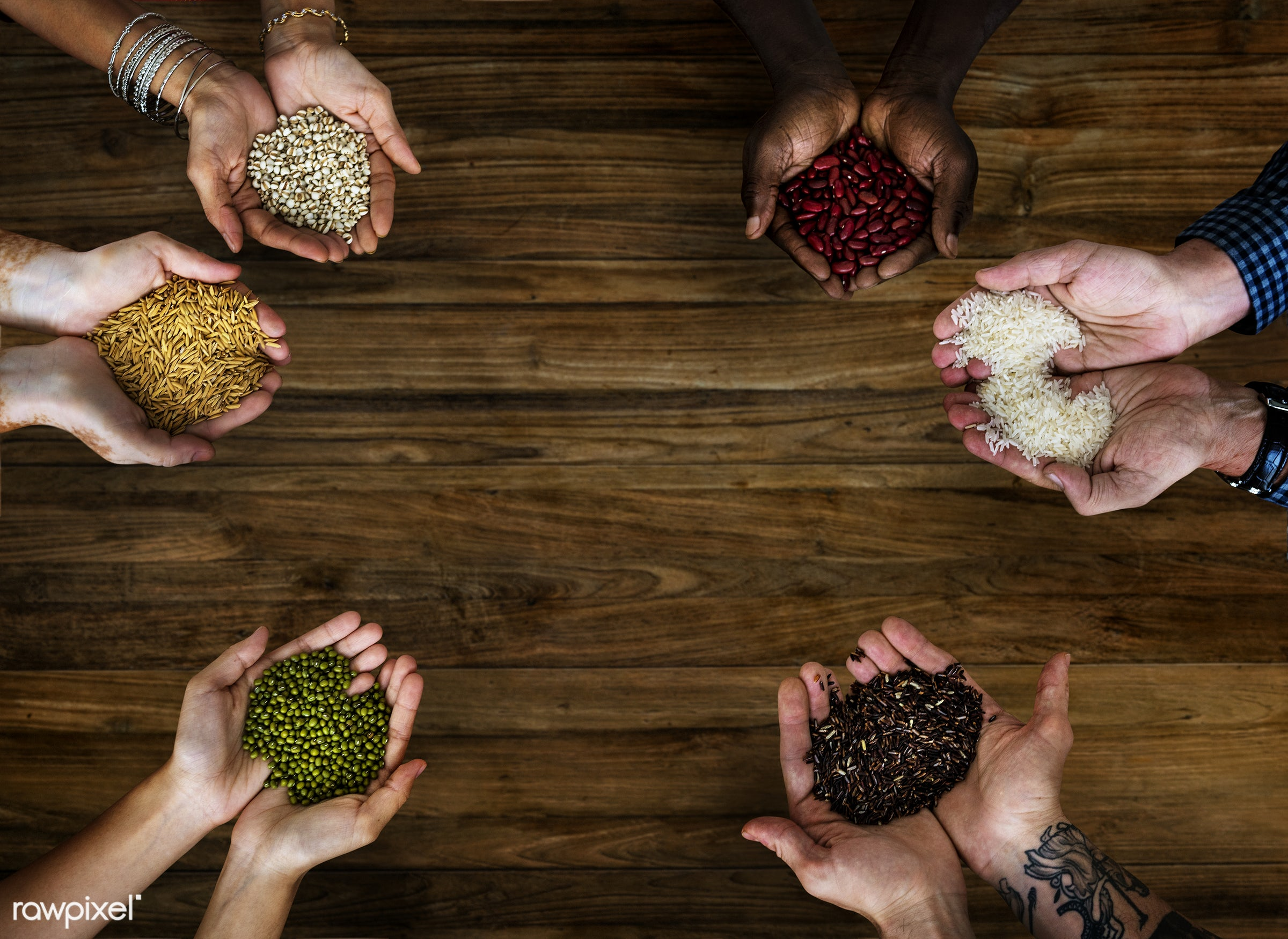 mockup, seed, african, agriculture, assorted, closeup, copy space, crop, descent, dry, food, grain, hands, health, healthy,...