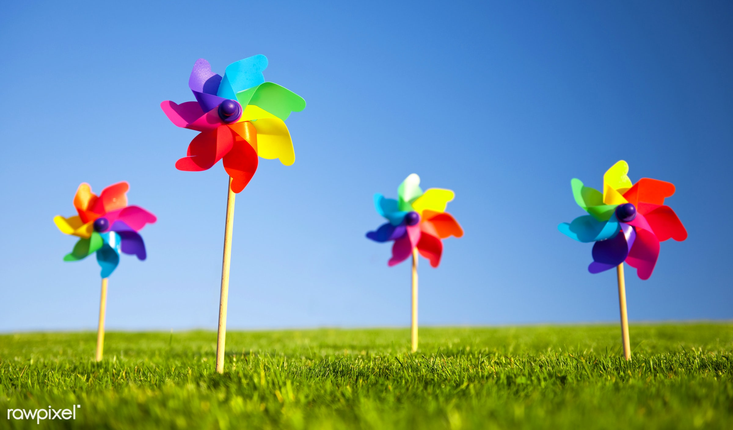 Group of pinwheels on the grass and one pinwheel standing out - ID ...