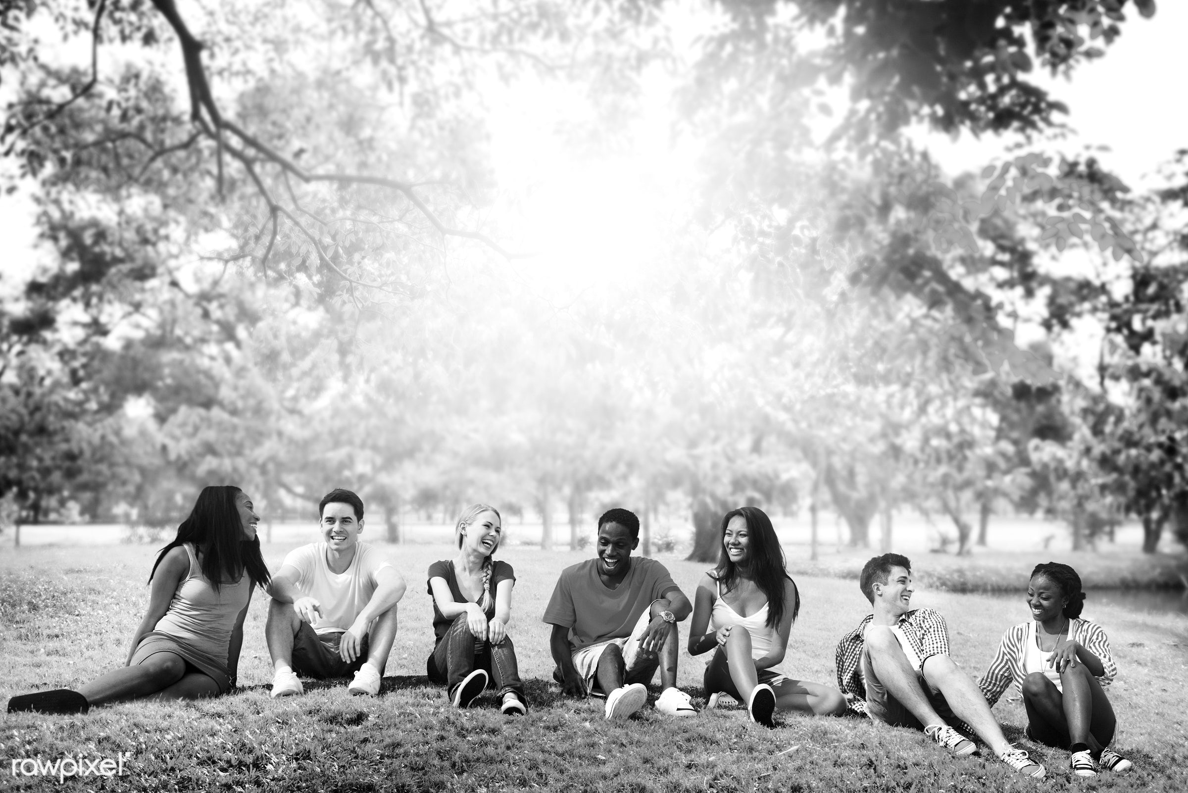 adult, african descent, amity, asian ethnicity, campus, cheerful, conversation, day, diverse, diversity, enjoying, female,...