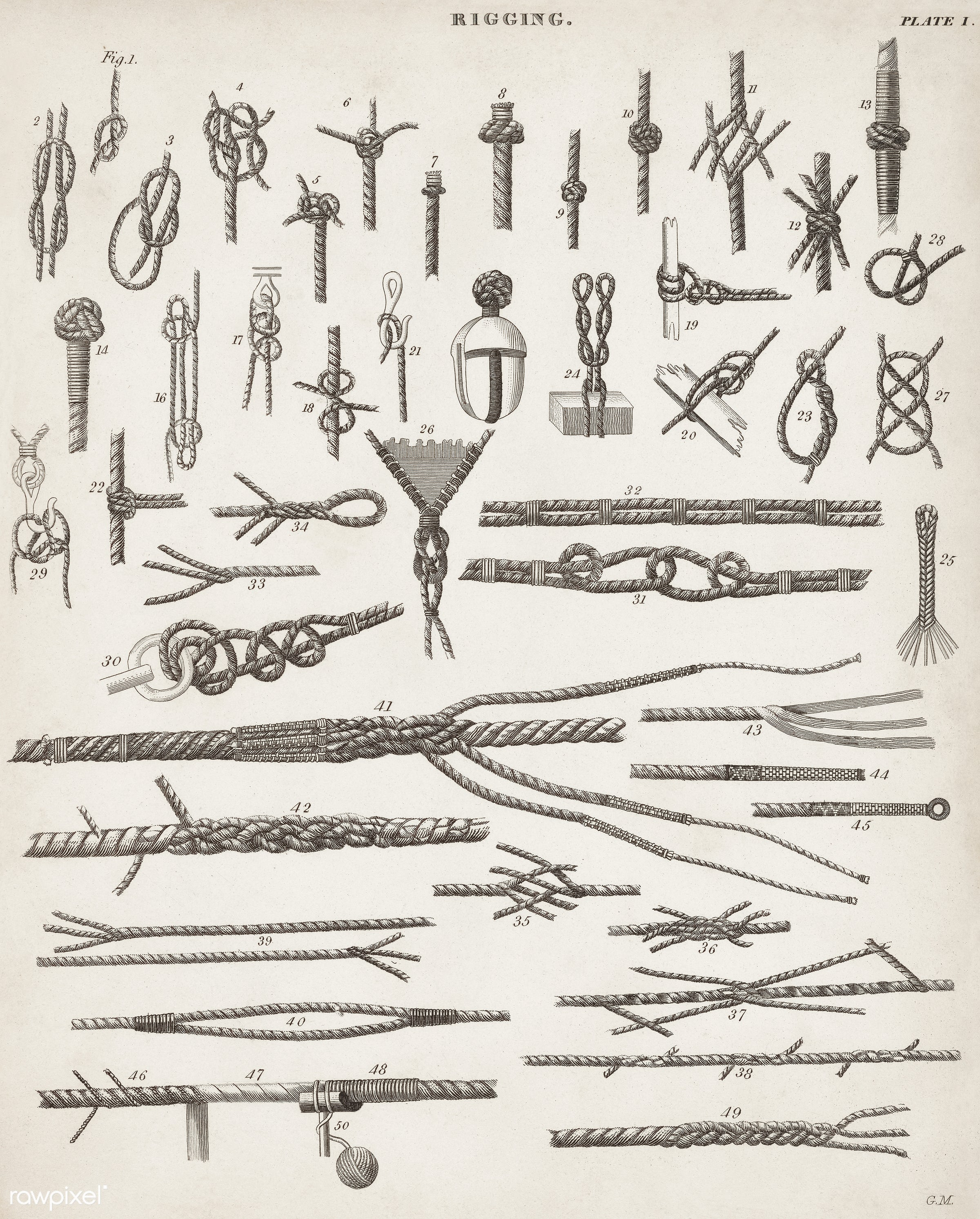 Vintage Illustration of different types of knots published in 1810-1842.  - antique, artwork, cc0, collection, creative...