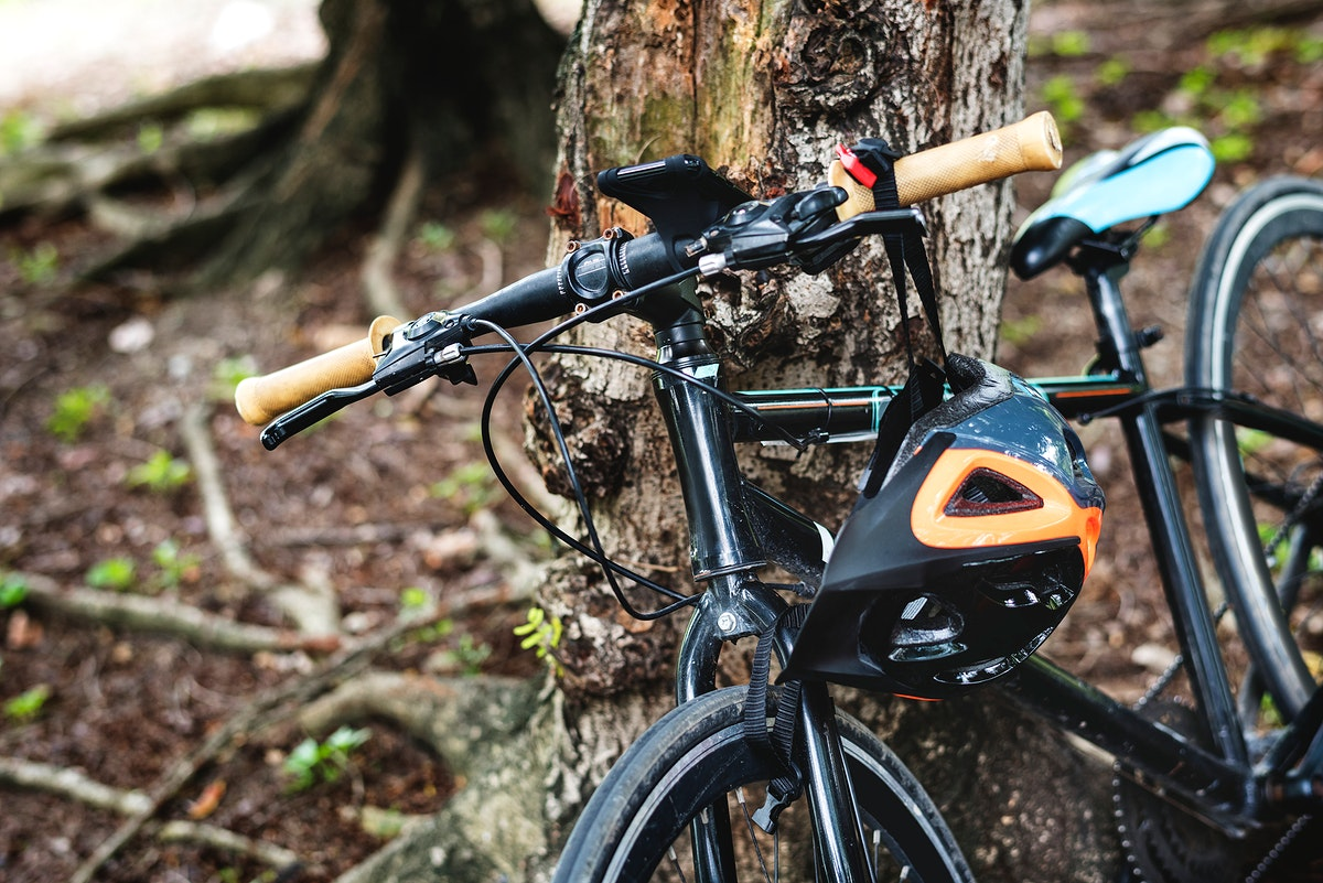 Closeup of bicycle leaning on a tree