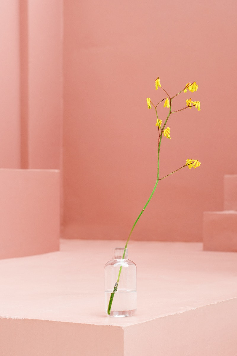 Yellow flower in a glass vase at a pink stair