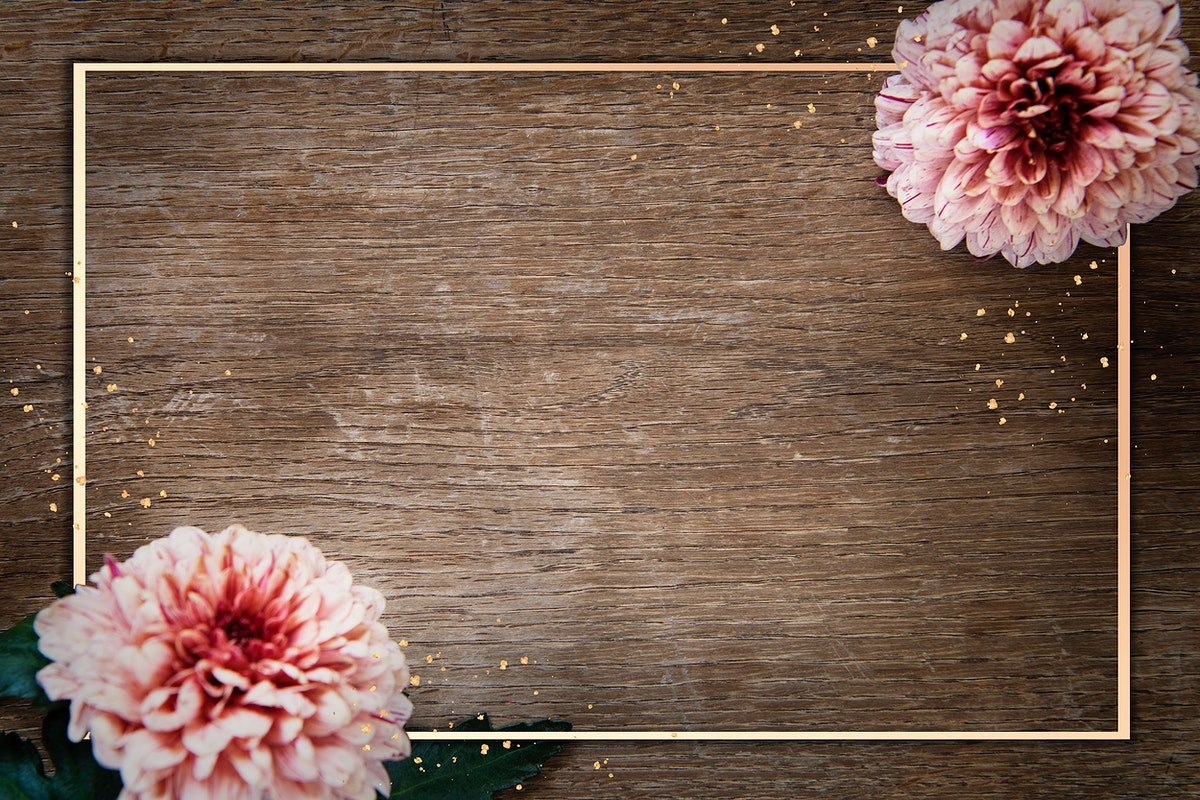 Gold frame with chrysanthemum PIP Salmon on a wooden background mockup