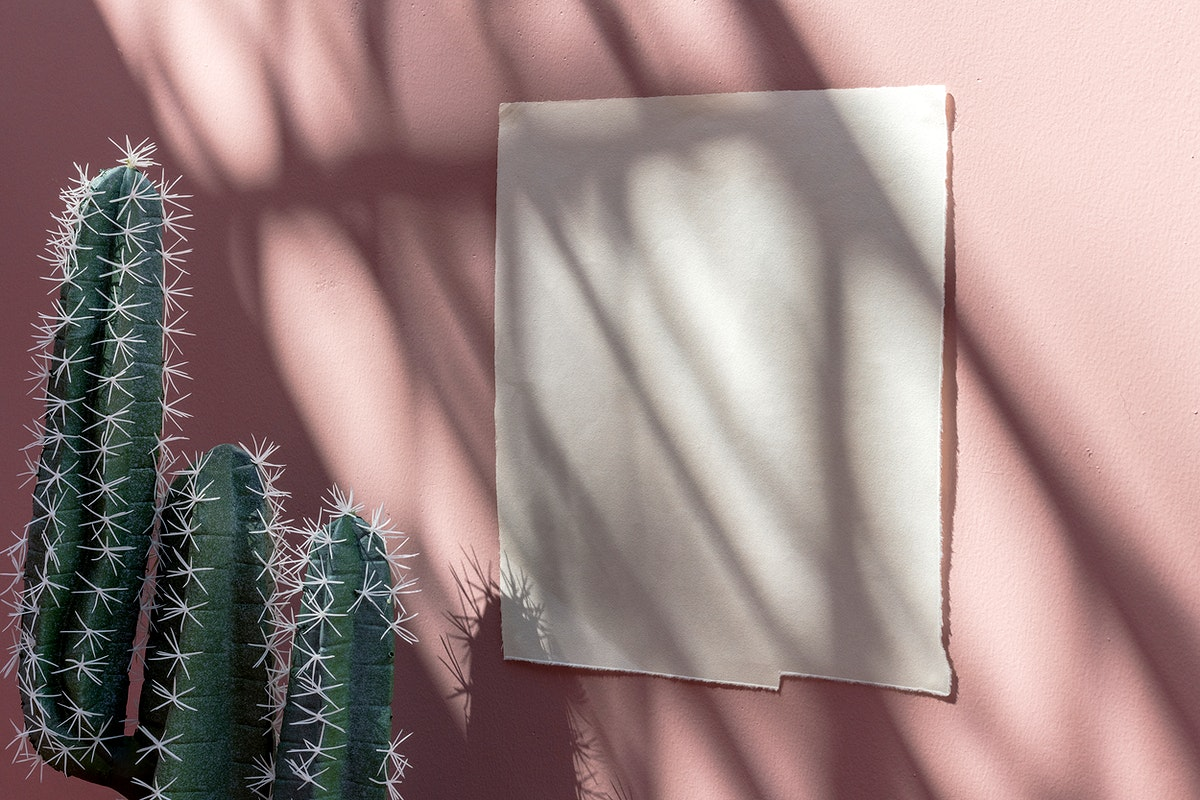 White poster template on a pastel pink wall by cacti