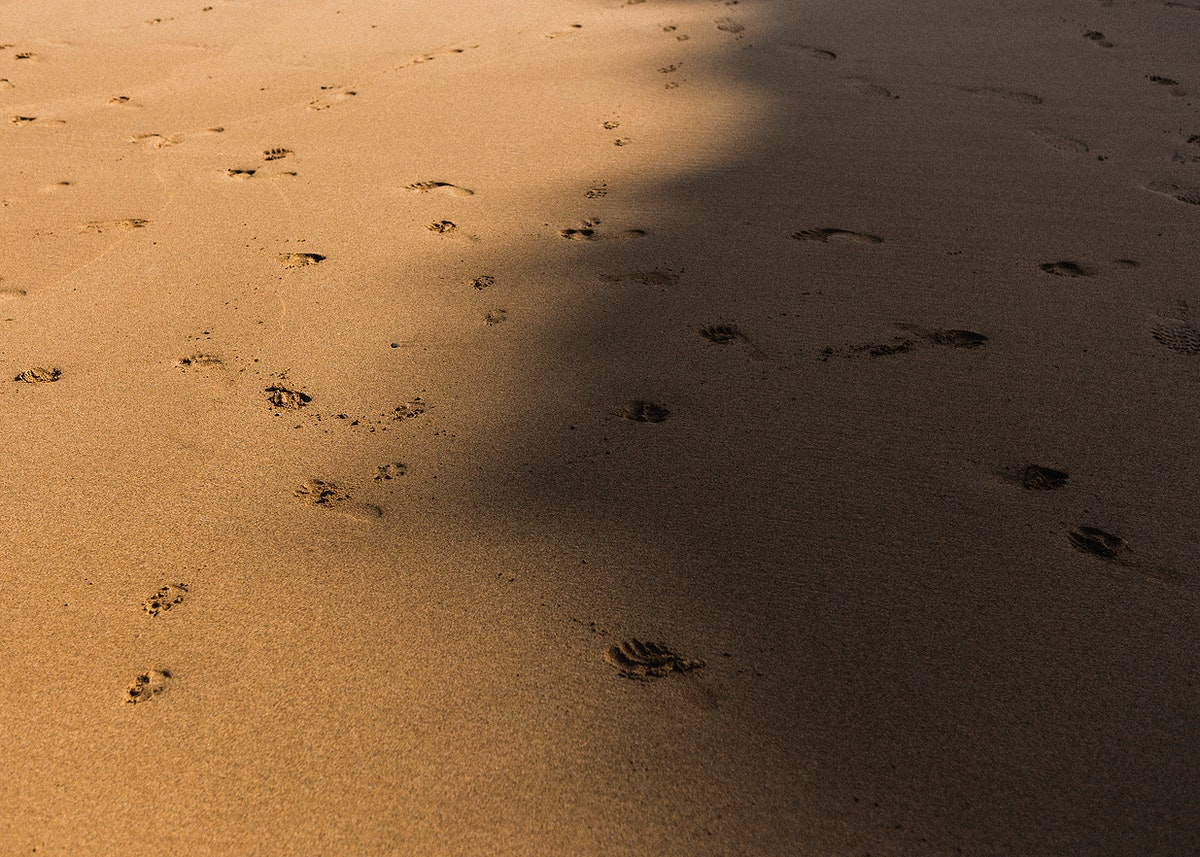 Shadow over the sand with footprints