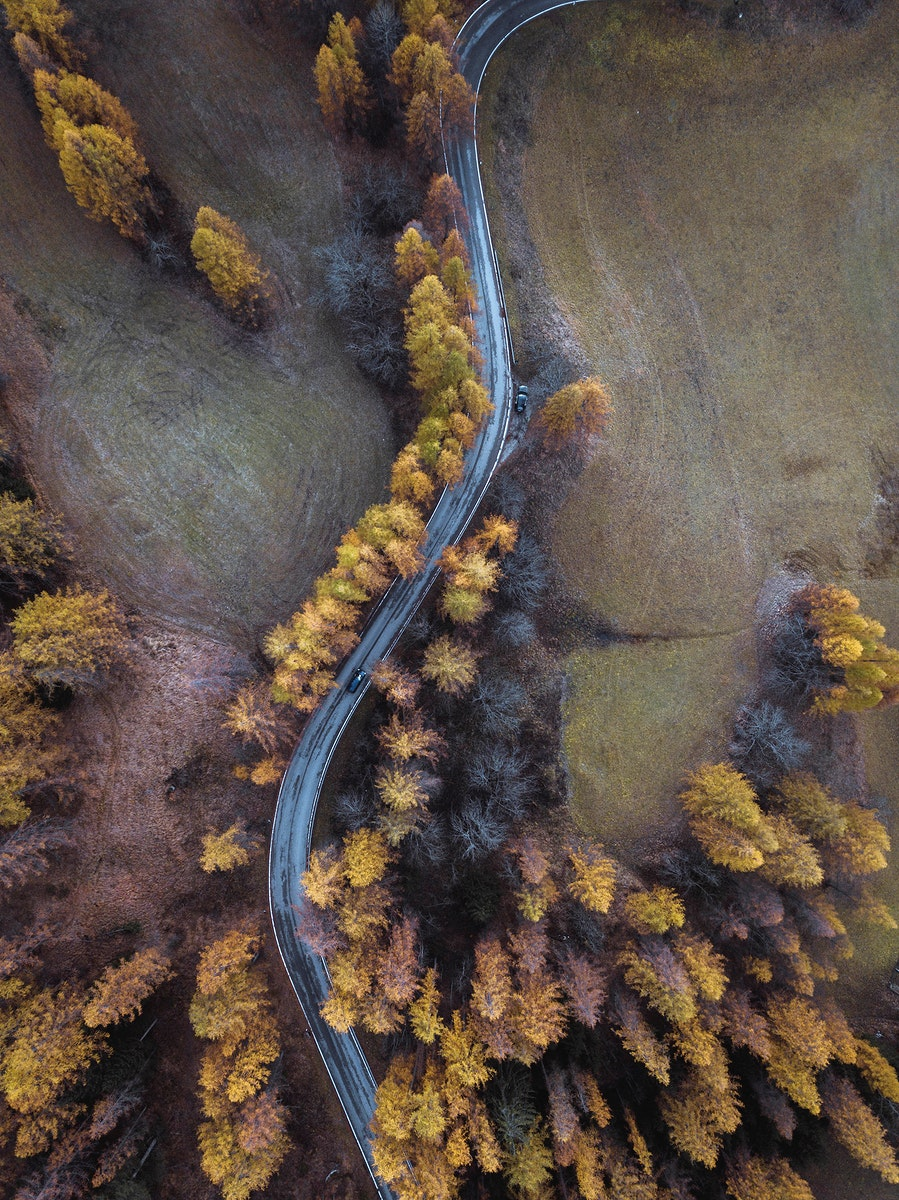 Driving among the autumn forest drone shot