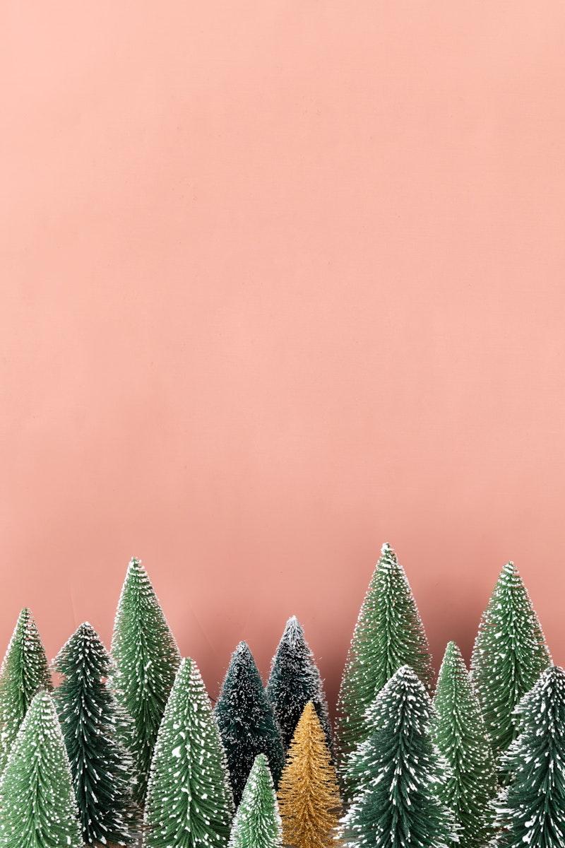 Golden pine tree among green pine trees