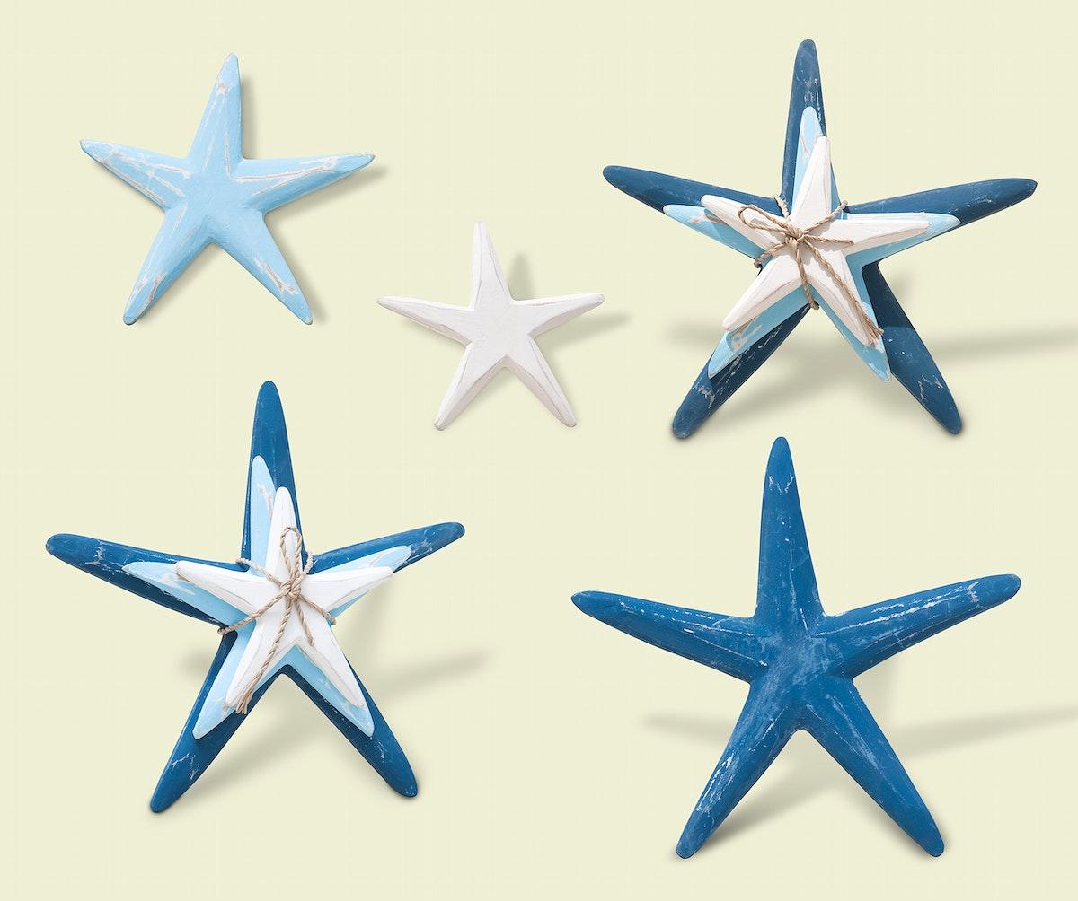 Blue starfish illustrations