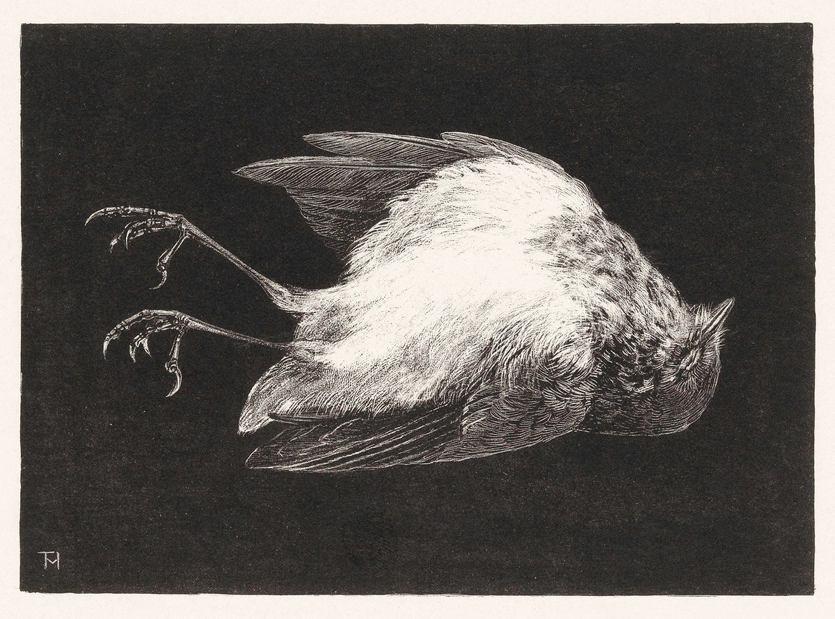 Dood roodborstje (1895) print in high resolution by Theo van Hoytema. Original from The Rijksmuseum. Digitally enhanced by…