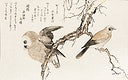 """Kashidori Fukuro by <a href=""""https://www.rawpixel.com/search/Utamaro%20Kitagawa?sort=curated&amp;page=1"""">Utamaro Kitagawa</a> (1753-1806), a traditional Japanese ukiyo-e style illustration of jay and owl birds and a Japanese poem written on both sides of the pages. Original from Library of Congress. Digitally enhanced by rawpixel."""