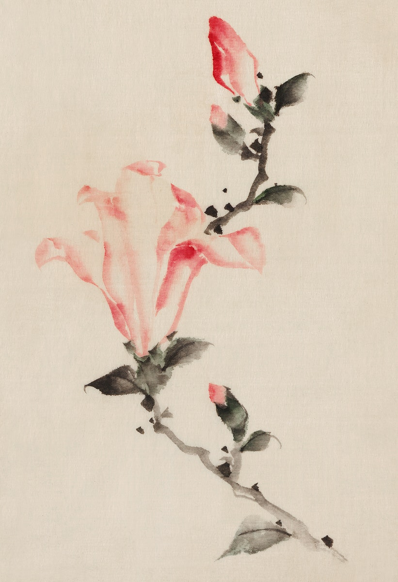 Large Pink Blossom on a Stem with Three Additional Buds by Katsushika Hokusai published between 1830 and 1850, an…