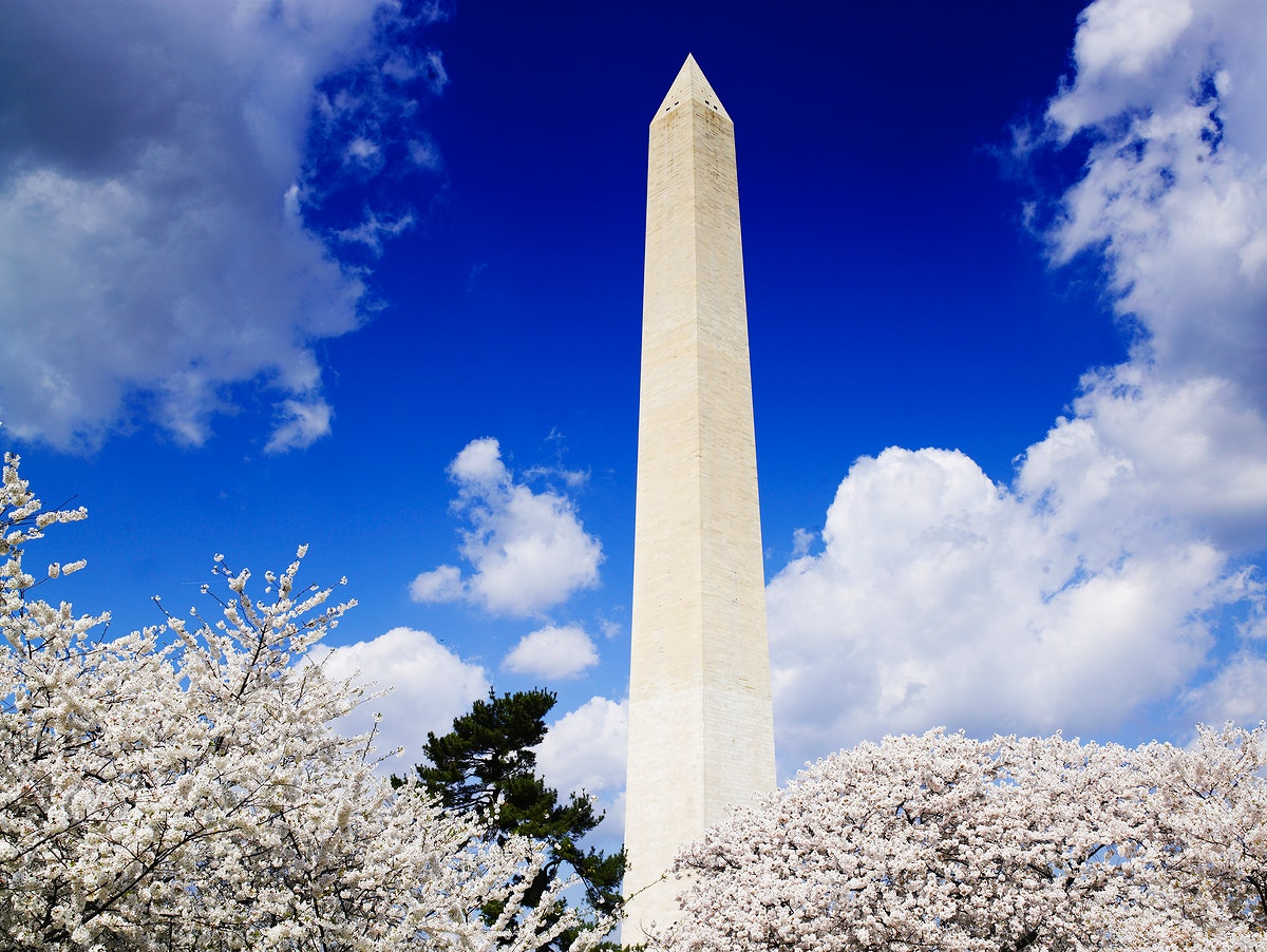 Washington Monument in spring. Original image from Carol M. Highsmith's America, Library of Congress collection.…