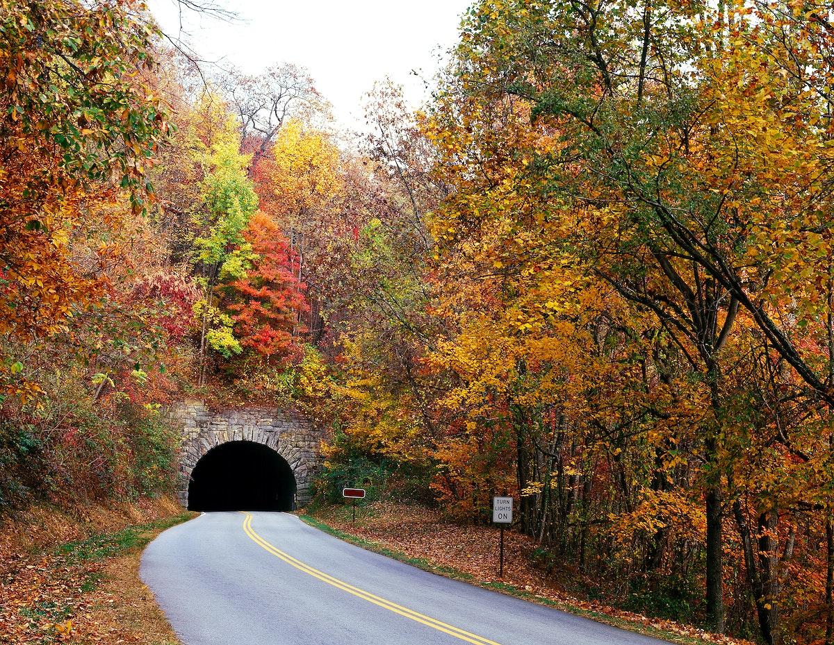Tunnel on North Carolina's Blue Ridge Parkway. Original image from Carol M. Highsmith's America, Library of Congress…