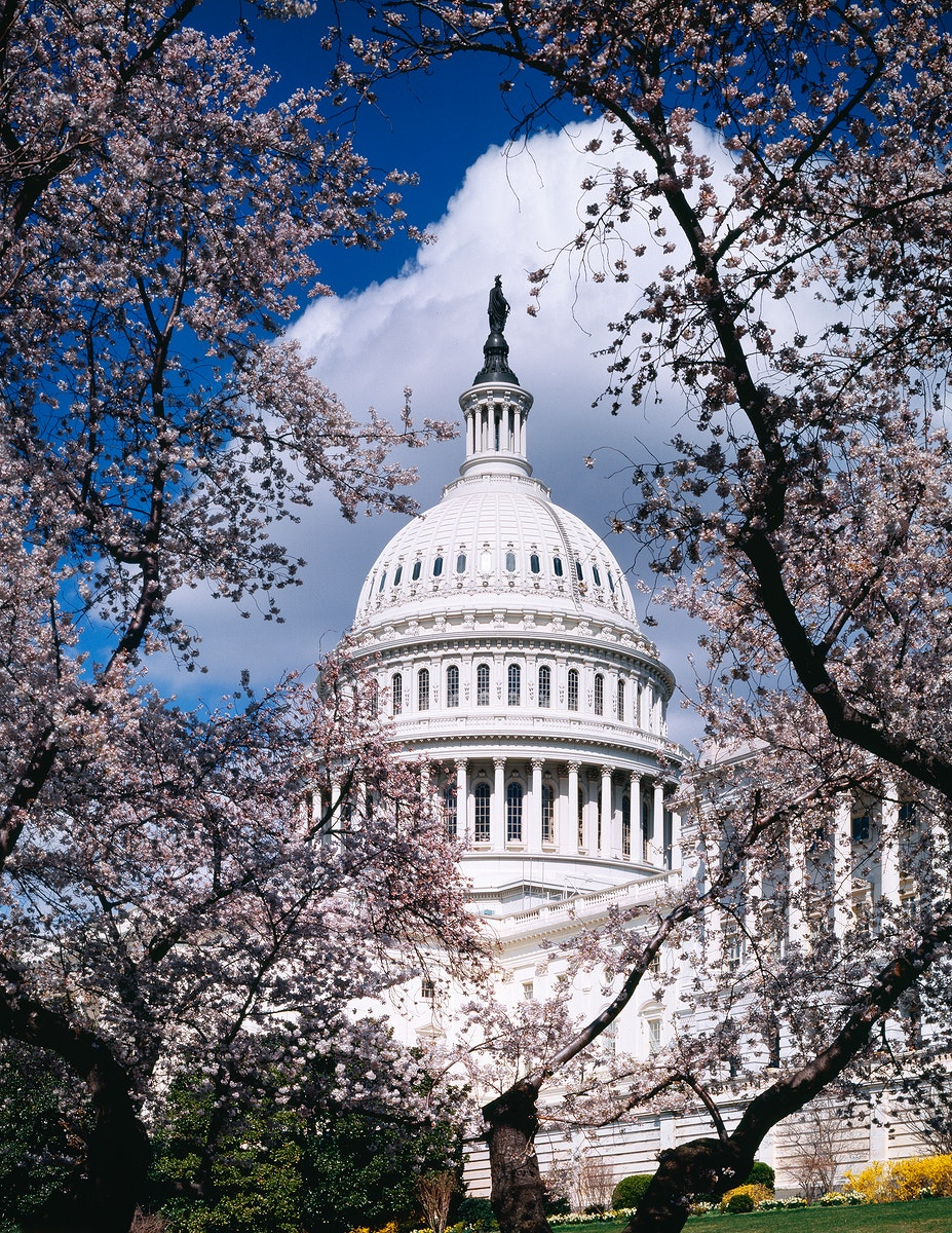 U.S. Capitol, Washington D.C. Original image from Carol M. Highsmith's America, Library of Congress collection.…