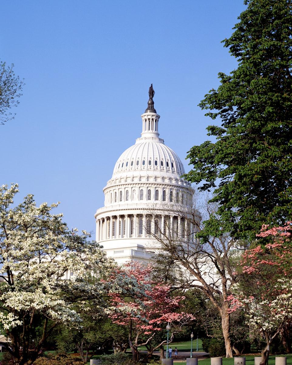 U.S. Capitol Building, Washington D.C. Original image from Carol M. Highsmith's America, Library of Congress…