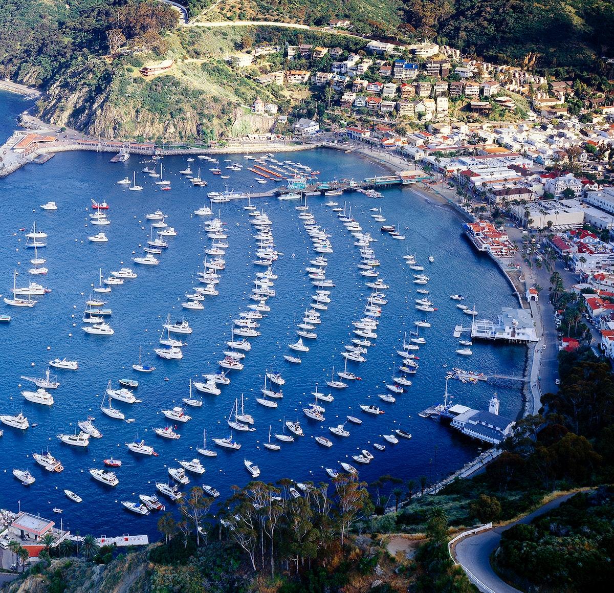 Santa Catalina Island, often called Catalina Island, or just Catalina, is a rocky island off the coast of the U.S. state of…