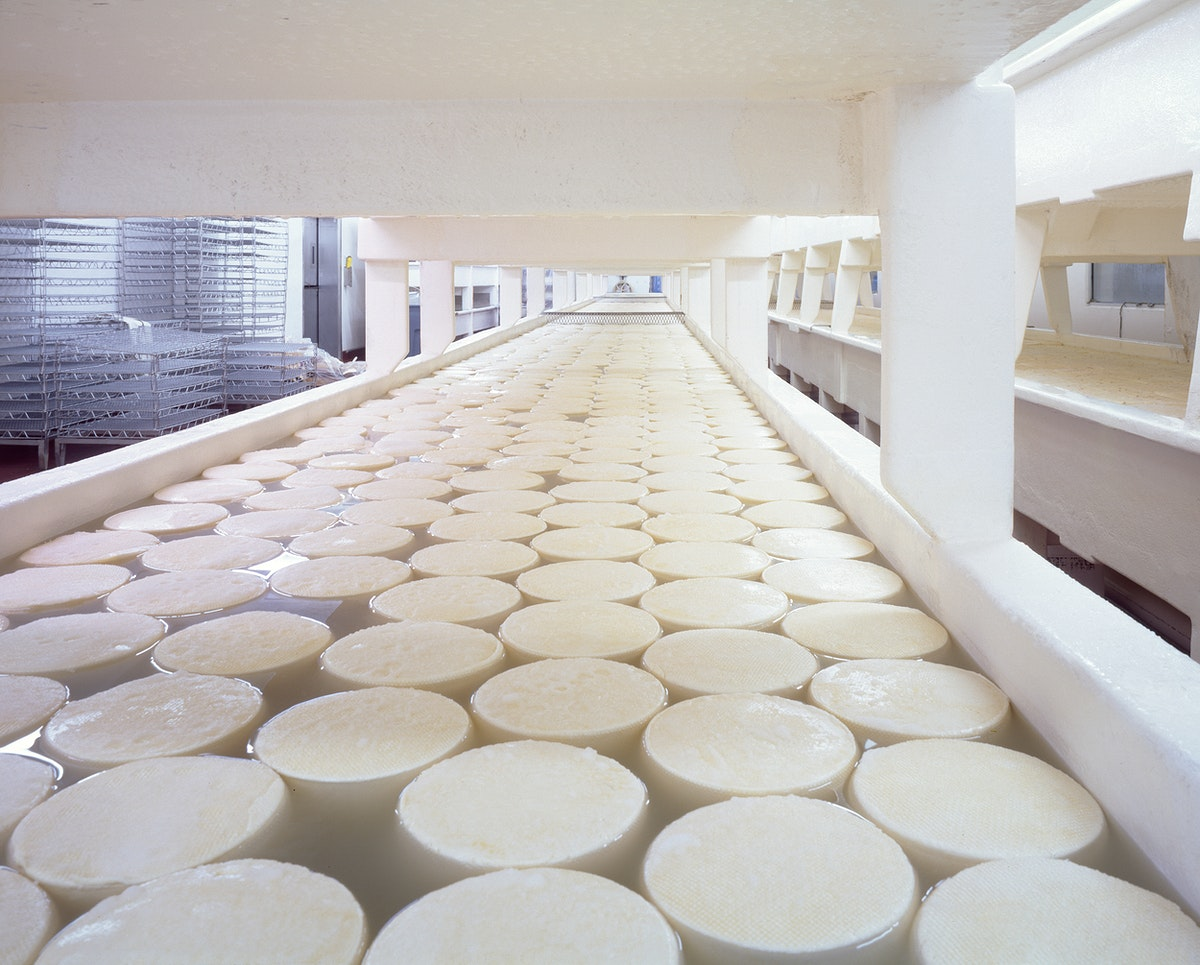 Curing baby Swiss cheese rounds at the Alp and Dell factory. Original image from Carol M. Highsmith's America, Library…