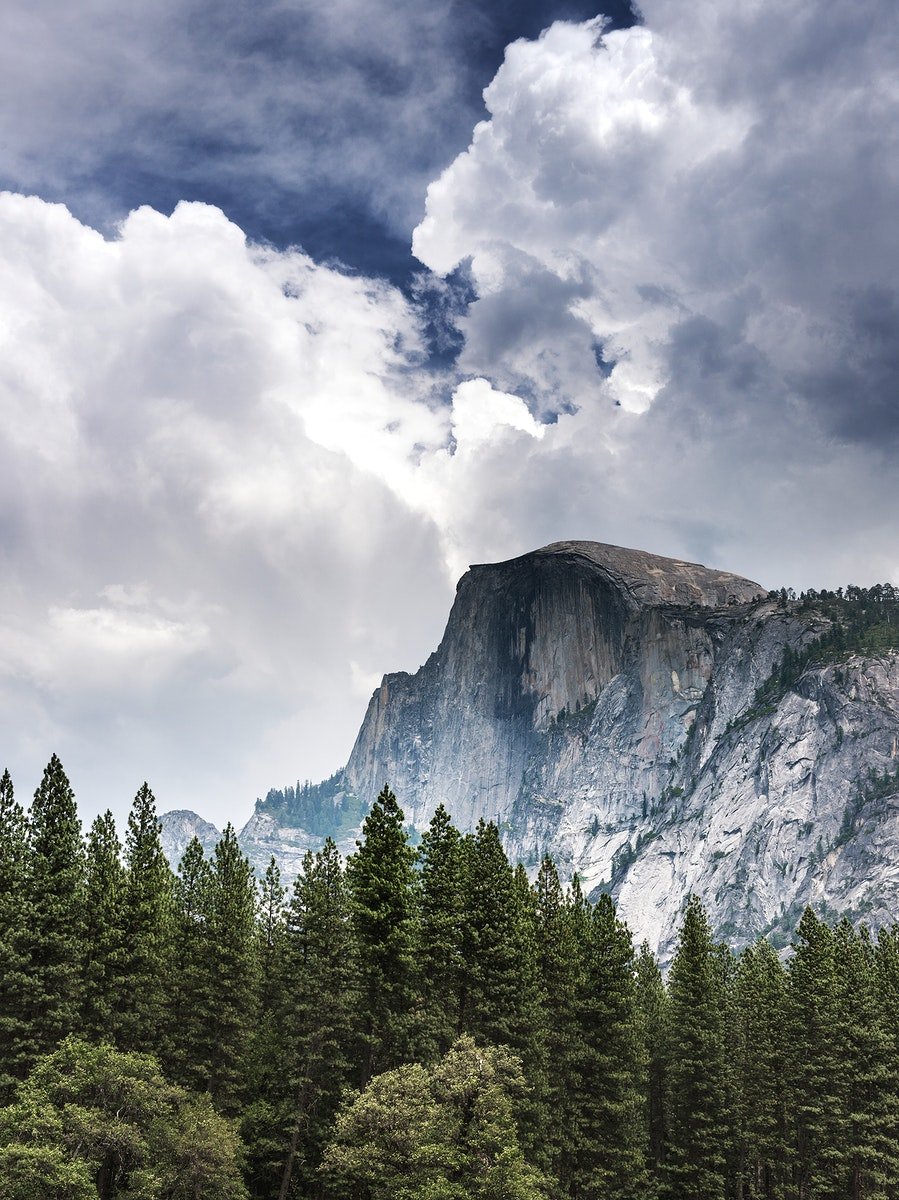 Yosemite National Park. Original image from Carol M. Highsmith's America, Library of Congress collection. Digitally…