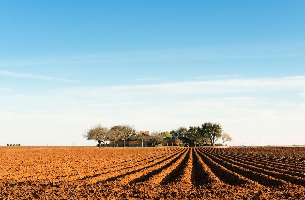 Deep, rich furrows in farmland east of Lamesa in Dawson County, Texas. Original image from Carol M. Highsmith's…