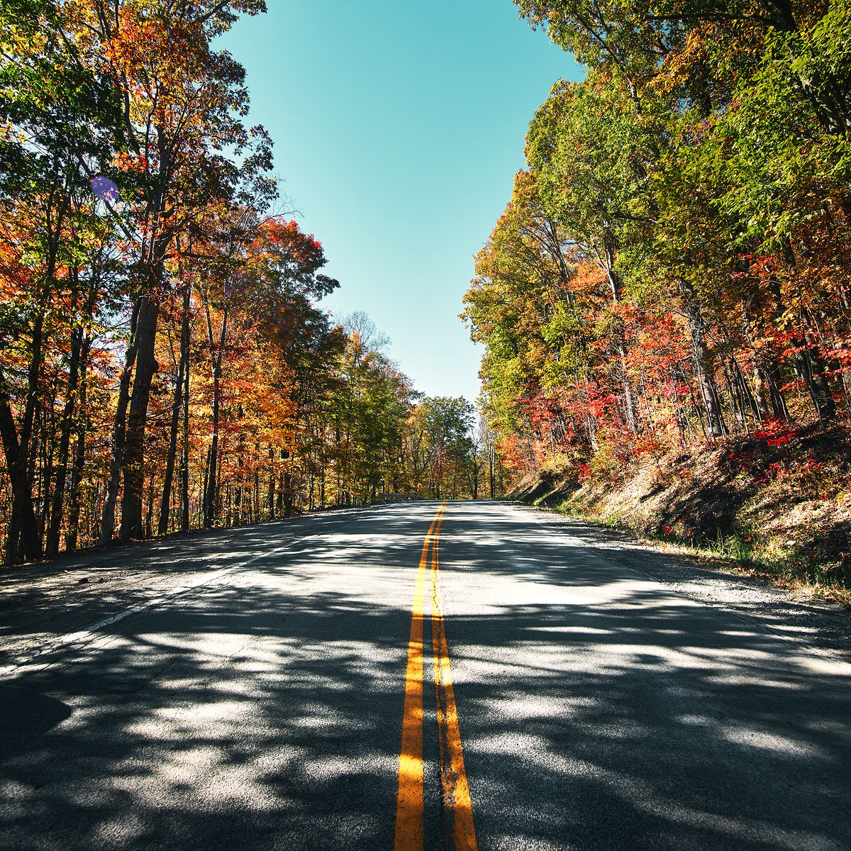 Fall scene near Babcock State Park in Fayette County, West Virginia. Original image from Carol M. Highsmith's America…