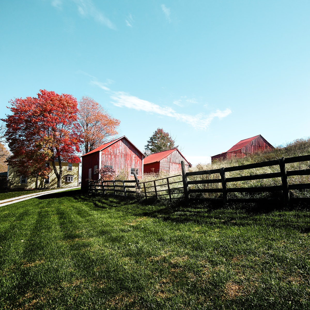 Grouping of small barns in this Monroe County, West Virginia, autumnal rural scene. Original image from Carol M.…