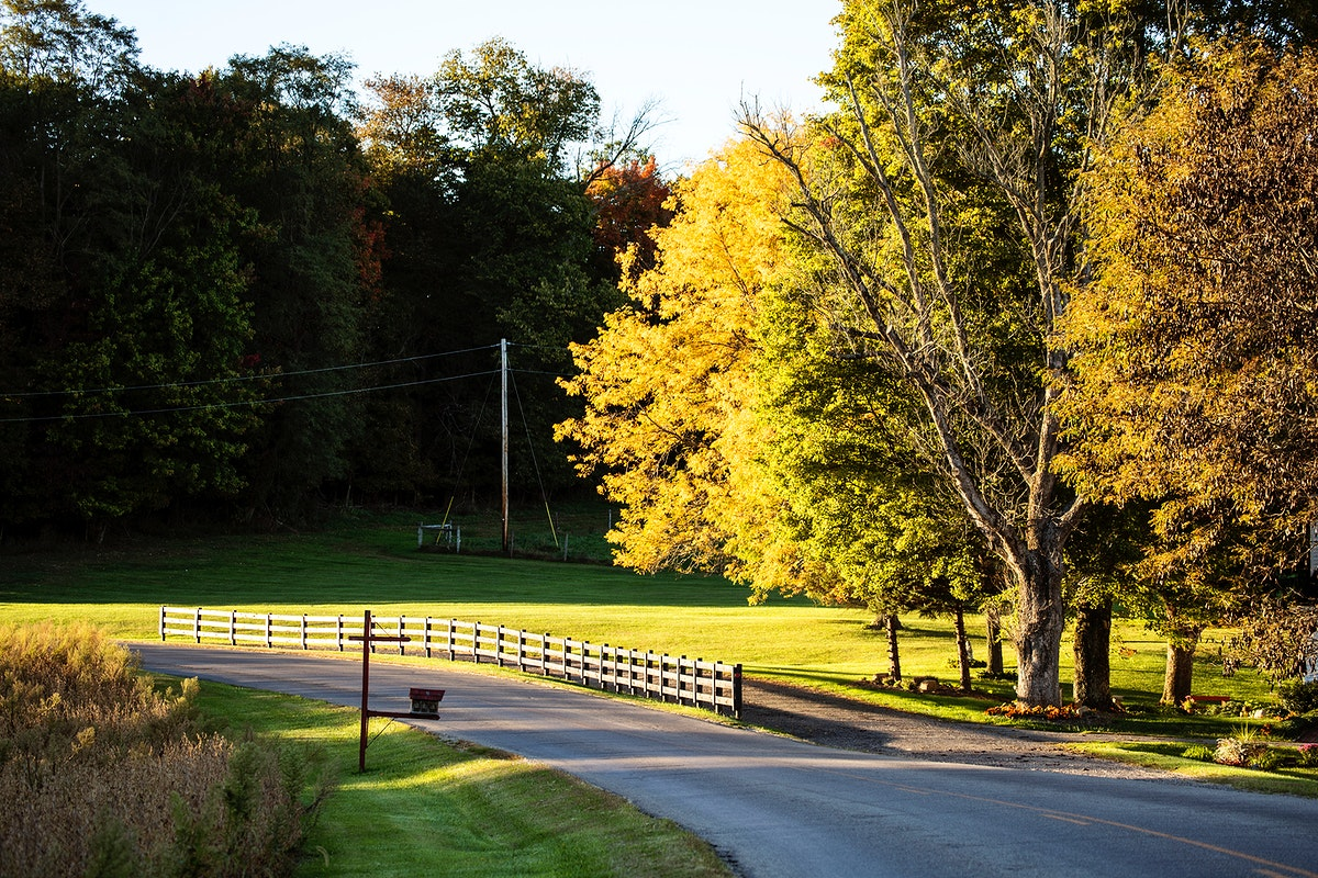 Autumn is upon you in rural Knox County, Ohio, near Danville. Original image from Carol M. Highsmith's America, Library…