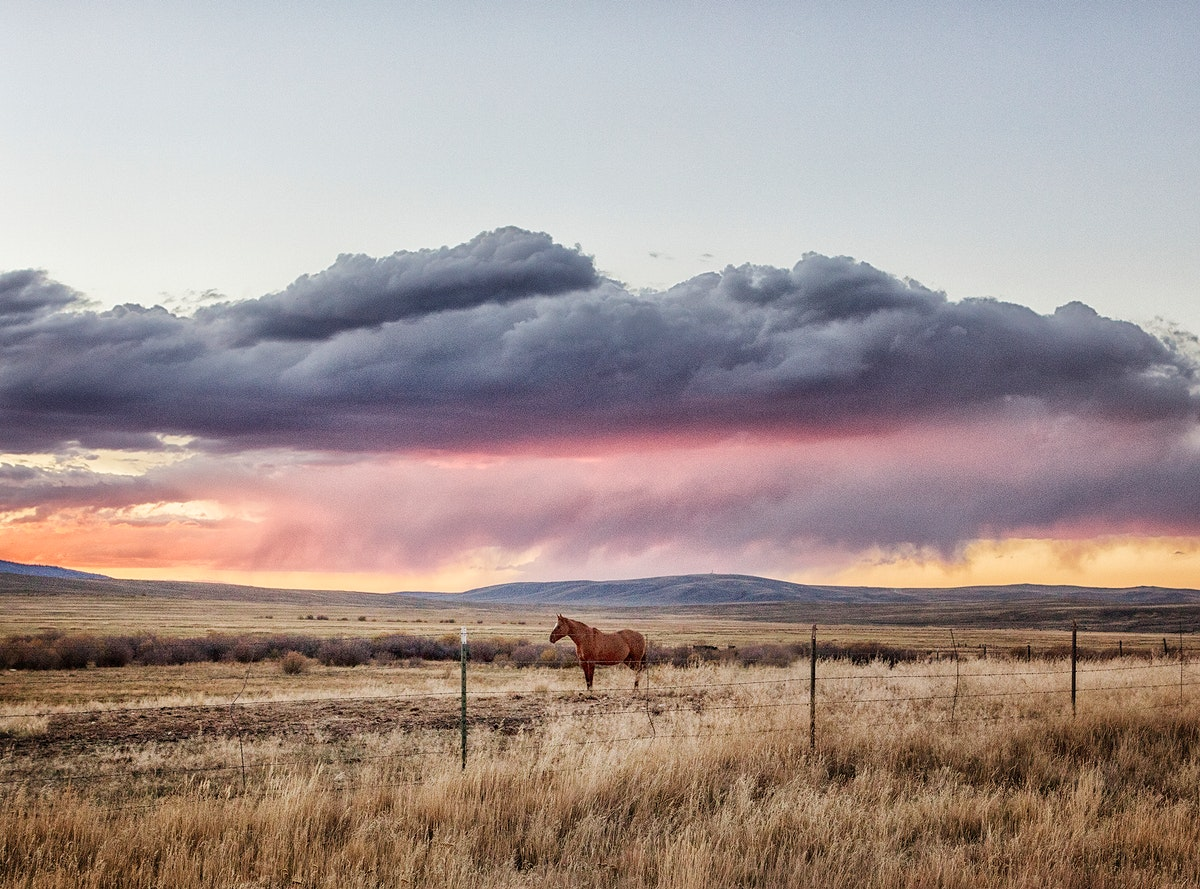 Sunset approaches at the Big Creek cattle ranch, a huge spread just above the Colorado line near Riverside in Carbon County…
