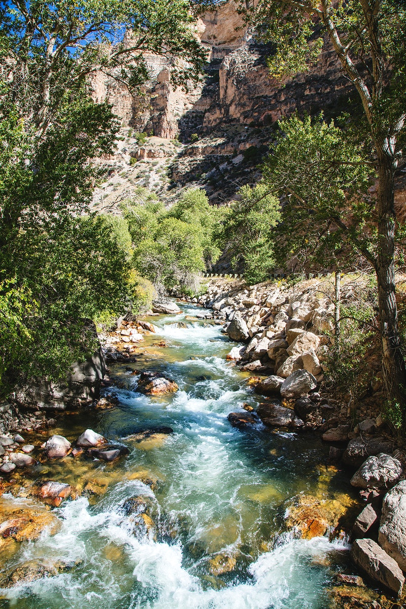 High-country stream and cottonwoods in rugged north-central Wyoming's rugged Big Horn County. Original image from Carol M.…