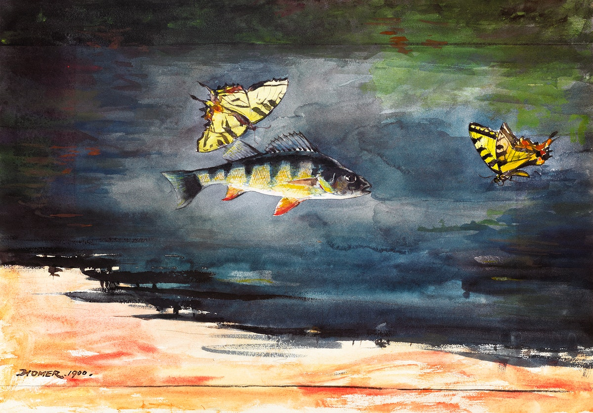 Fish and Butterflies (1900) by Winslow Homer. Original from The Clark Art Institute. Digitally enhanced by rawpixel.by…
