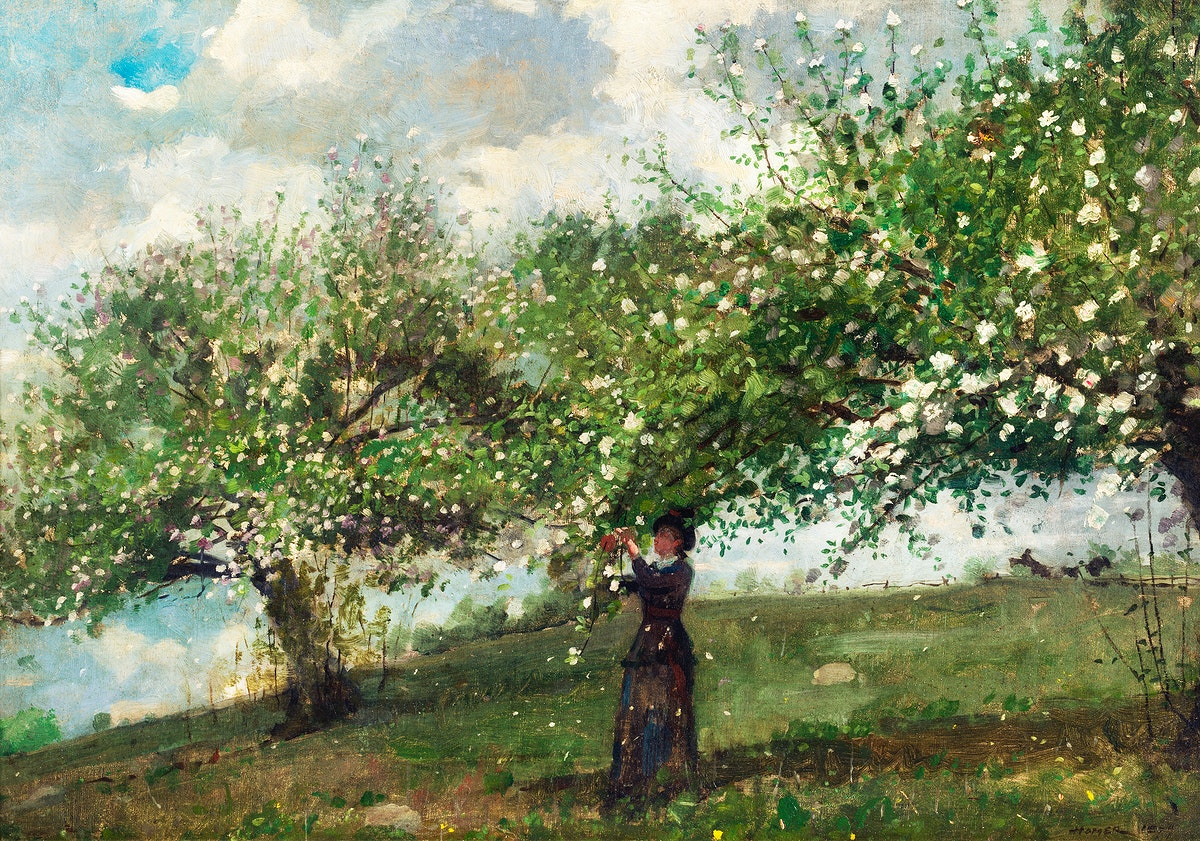 Girl Picking Apple Blossoms (1879) by Winslow Homer. Original from The Smithsonian. Digitally enhanced by rawpixel.