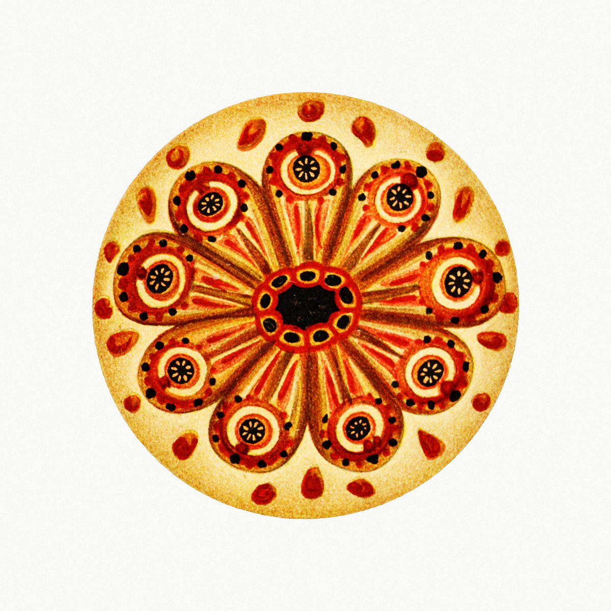 Colorful vintage tunicate ilustration