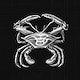 Vintage crab marine life illustration
