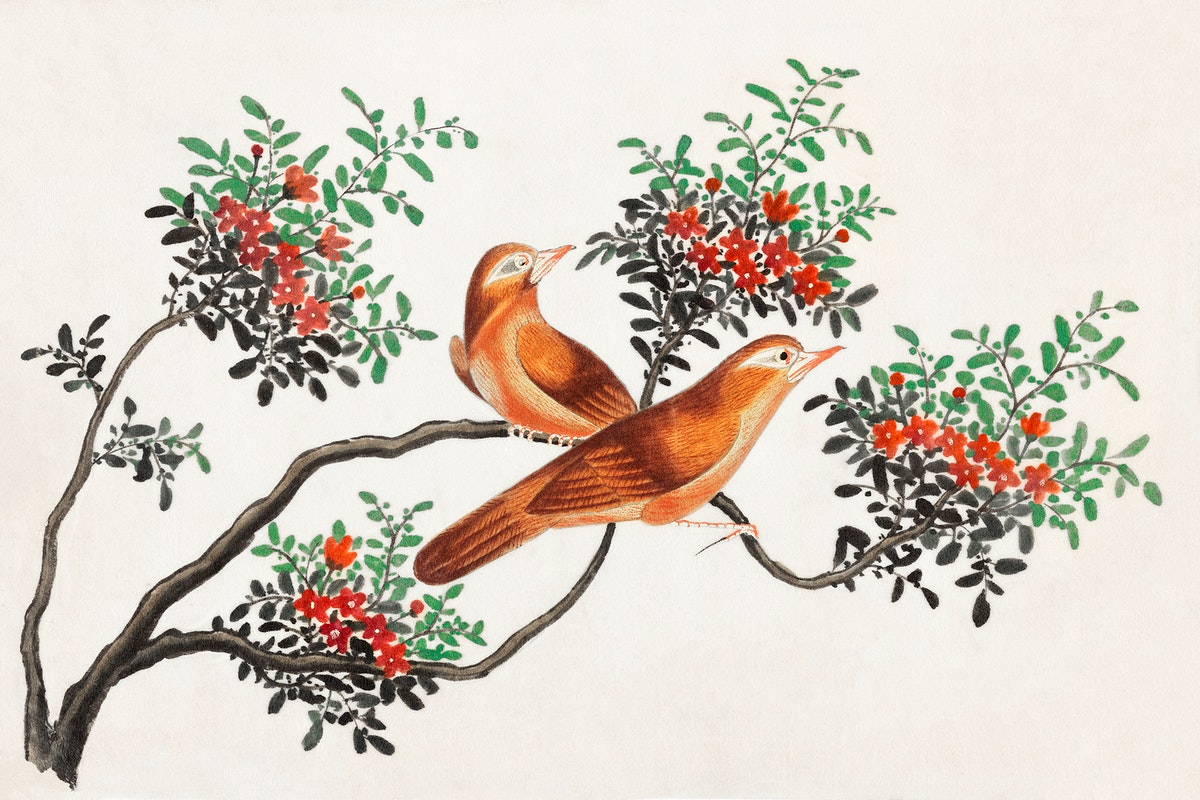 Chinese painting featuring birds of China (ca.1800–1899) from the Miriam and Ira D. Wallach Division of Art, Prints and…
