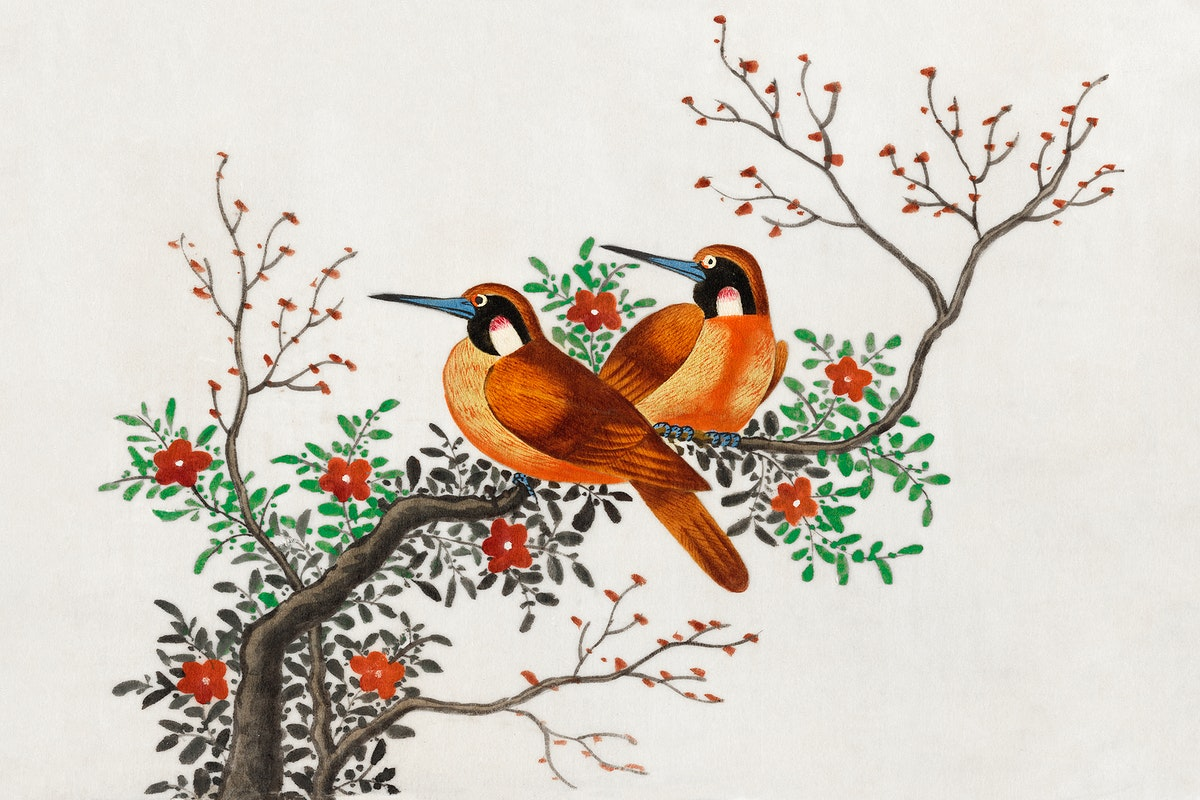 Chinese painting featuring two birds on a flowering tree branch (ca.1800–1899) from the Miriam and Ira D. Wallach…