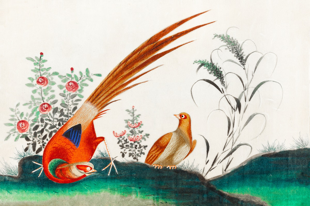 Chinese painting featuring two birds among flowers (ca.1800–1899) from the Miriam and Ira D. Wallach Division of Art…