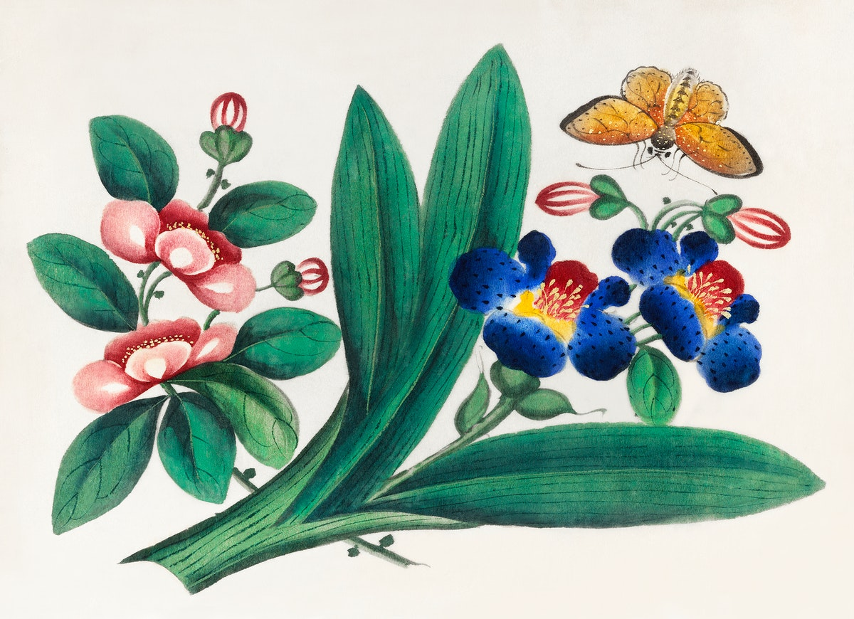 Chinese painting featuring flowers and a butterfly (ca.1800–1899) from the Miriam and Ira D. Wallach Division of Art…