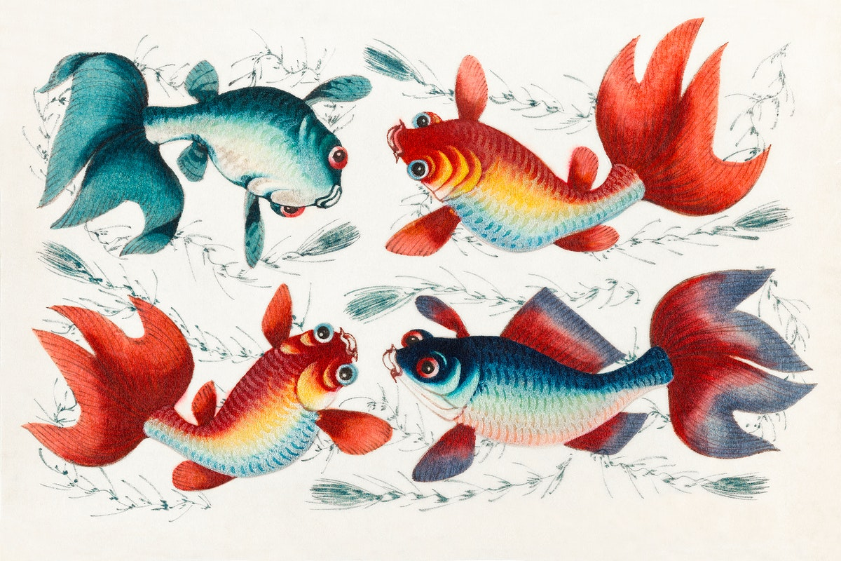 Chinese painting featuring two gold and two silver fish (ca.1800–1899) from the Miriam and Ira D. Wallach Division of…