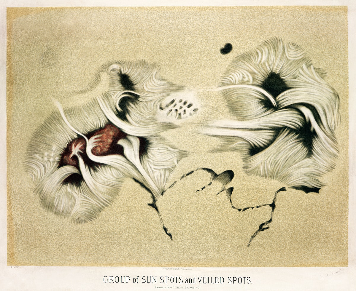 Group of sun spots and veiled spots (ca. 1881–1882) from The Trouvelot astronomical drawings: Atlas by E. L. Trouvelot.…