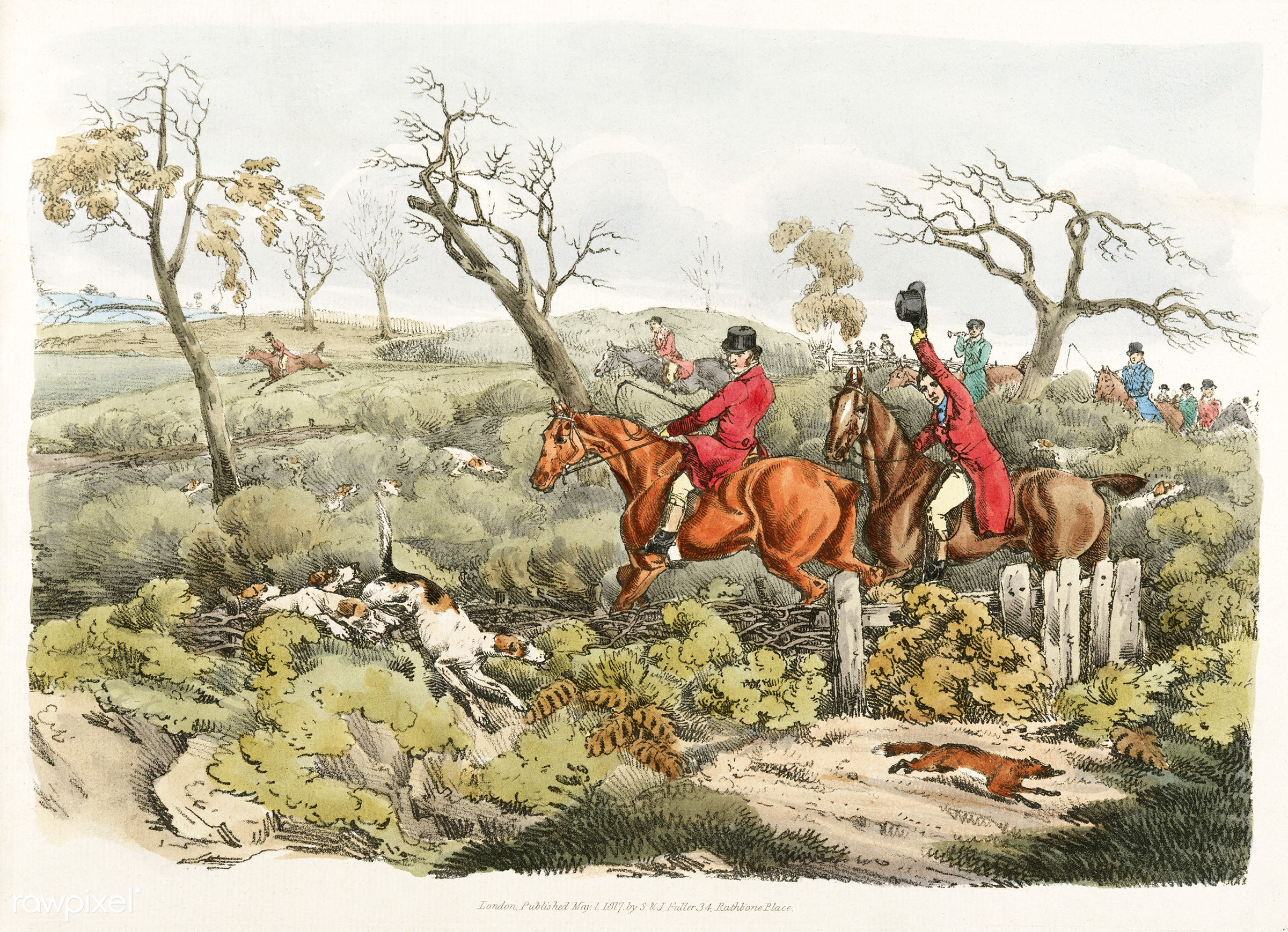Illustration of fox hunting from Sporting Sketches (1817-1818) by Henry Alken (1784-1851). - animal, antique, cc0,...