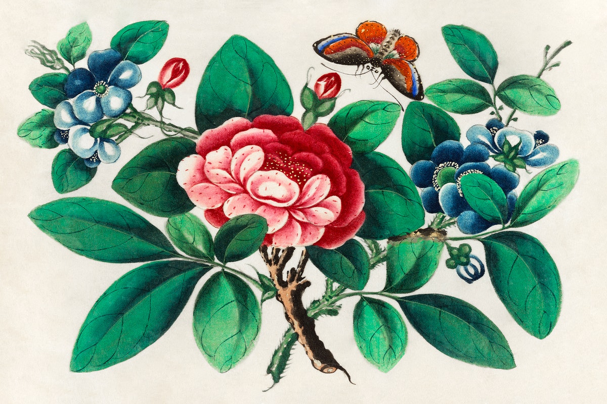Chinese painting featuring flowers and butterfly (ca.1800–1899) from the Miriam and Ira D. Wallach Division of Art…