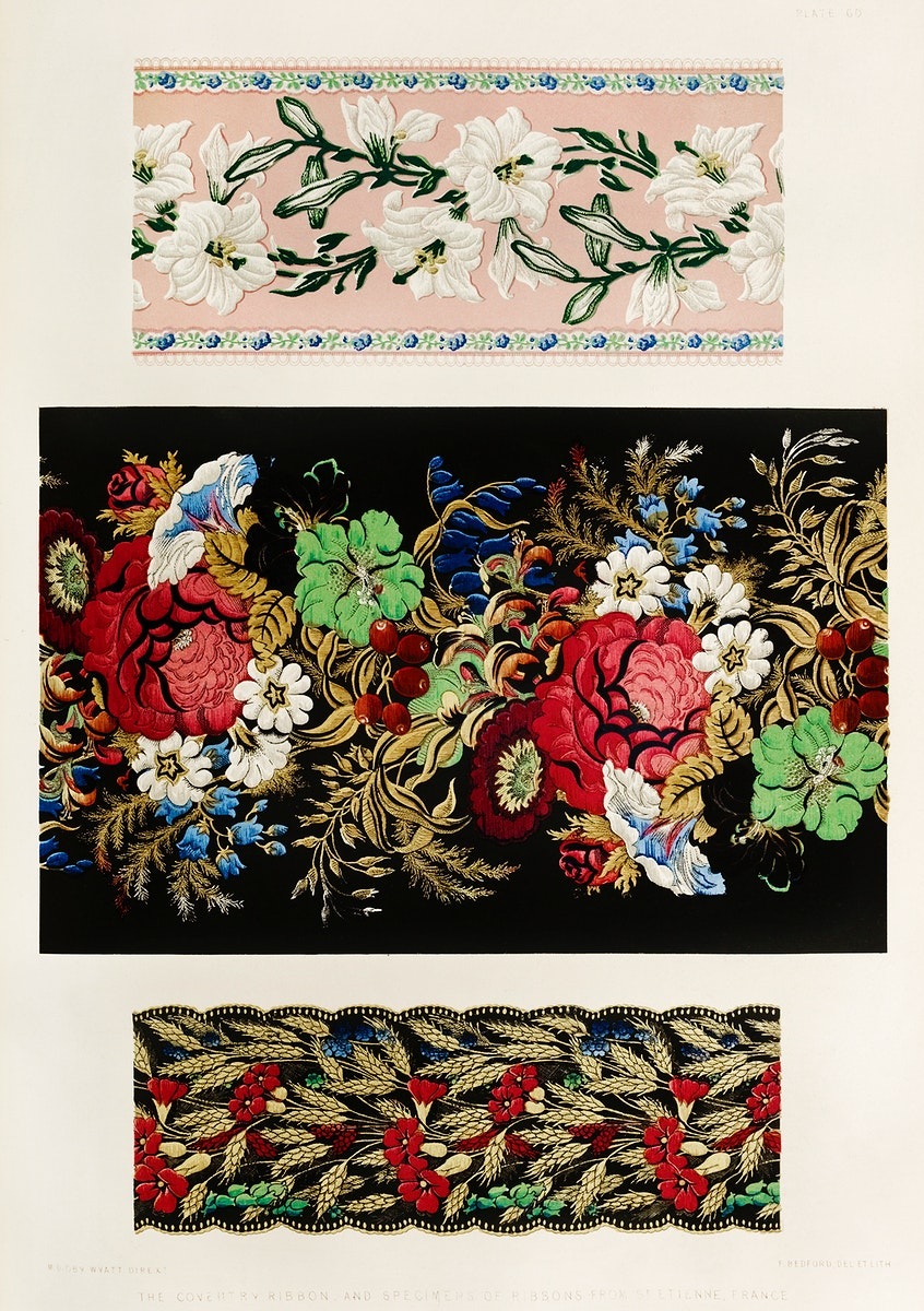 Coventry ribbon and specimens of ribbons from the Industrial arts of the Nineteenth Century (1851-1853) by Sir Matthew Digby…